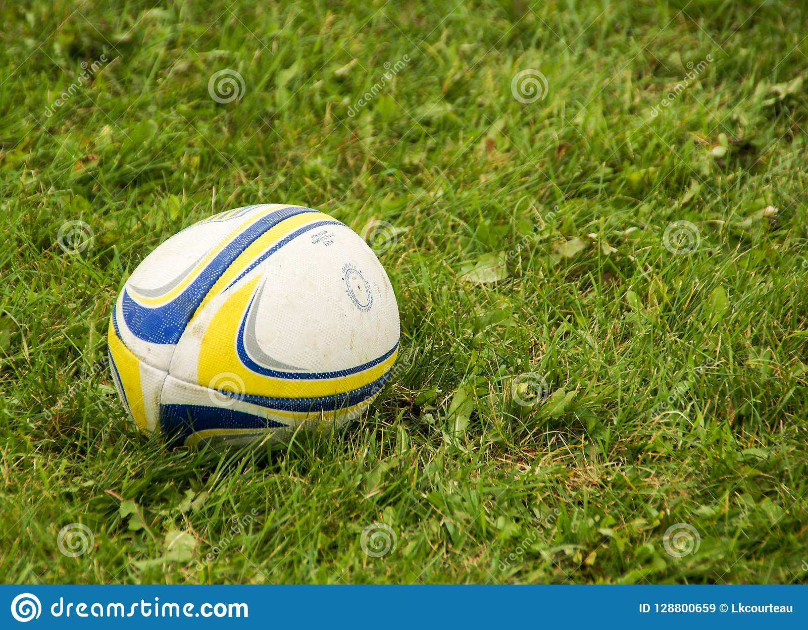 Blue, yellow, and white rugby ball sitting in green grass in Superior Wisconsin