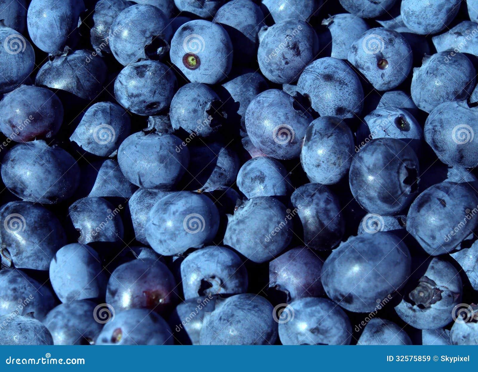 Top 7 Health Benefits of Blueberries