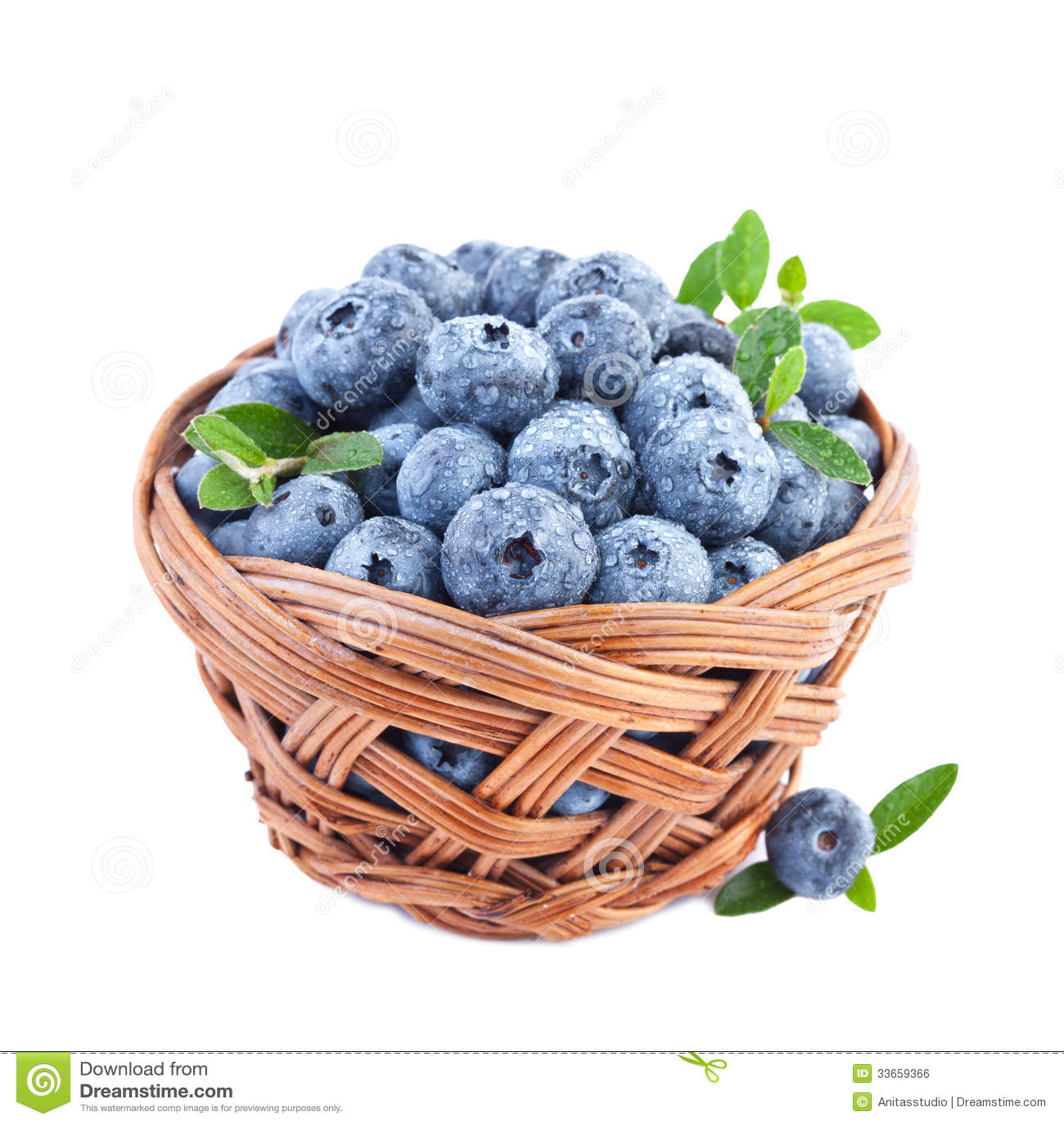 blueberry farm business plan
