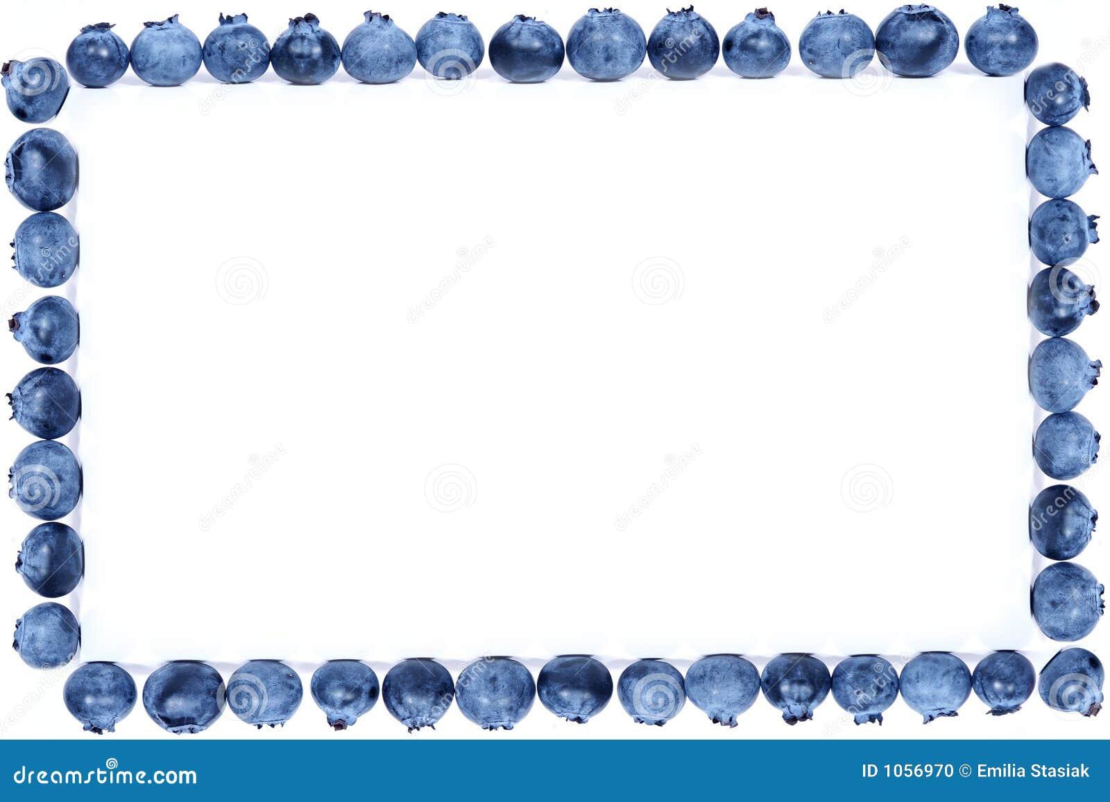 Blueberry Frame Stock Photo - Image: 1056970