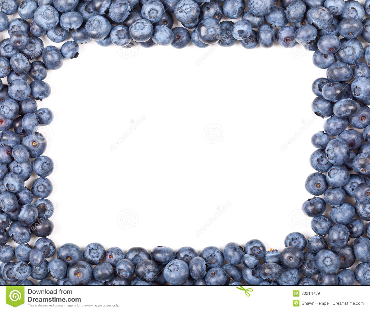 Blueberry Frame Royalty Free Stock Images