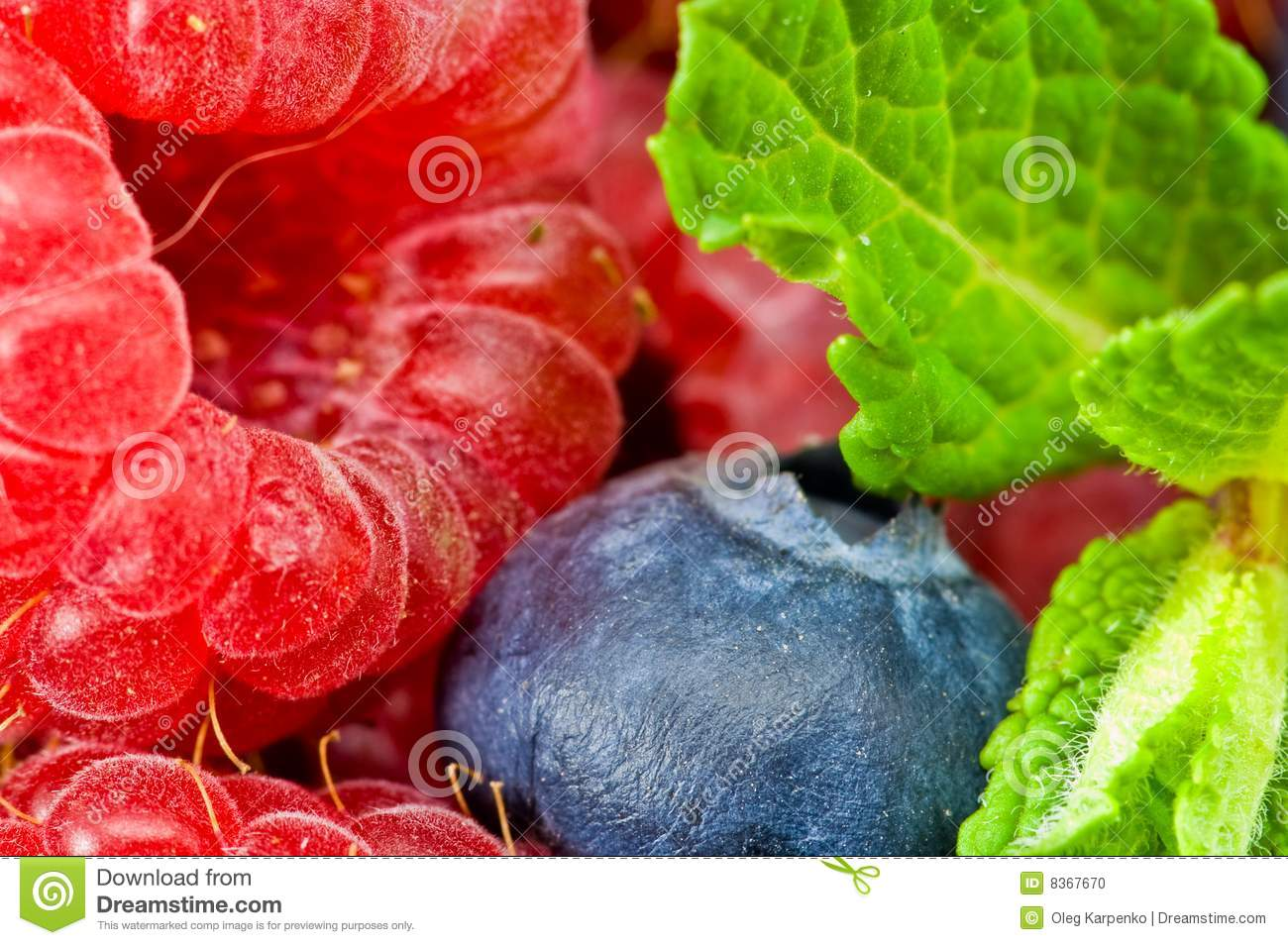 Blueberry And Raspberry With Mint Leaves Stock Photo - Image: 8367670