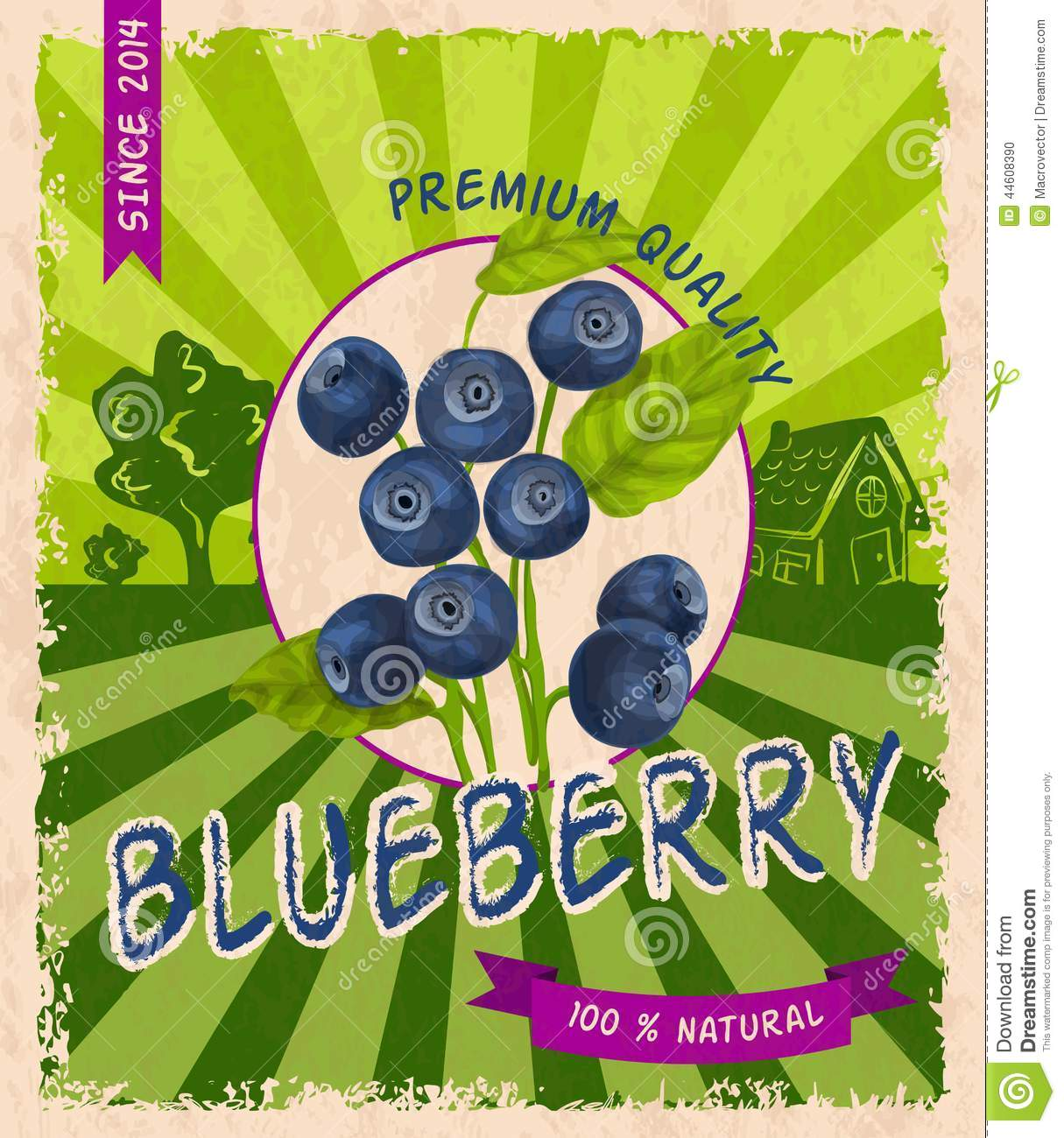 Blueberry Retro Poster Stock Vector - Image: 44608390