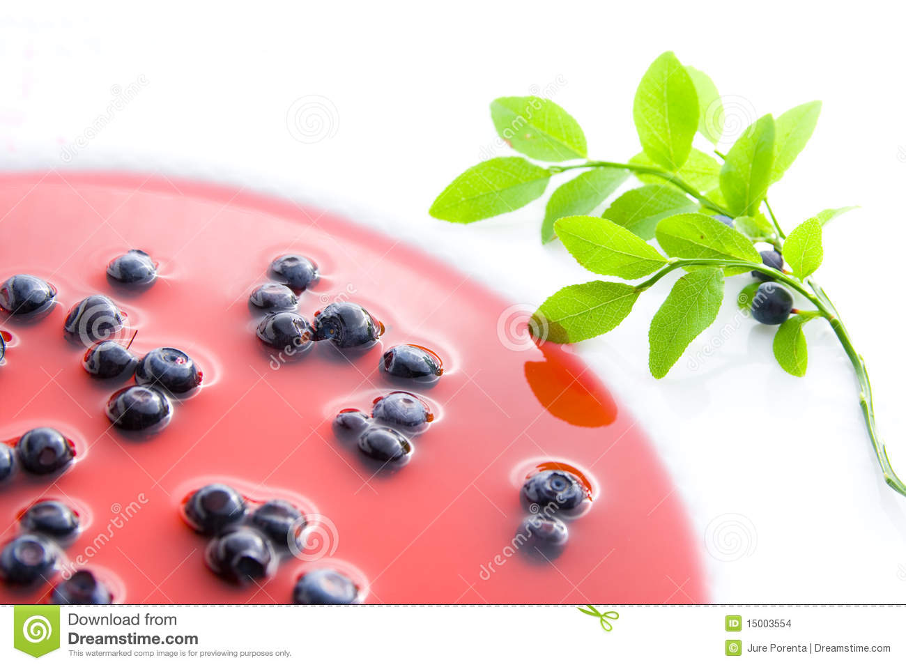 Blueberries on plate with decoration - blueberry soup.