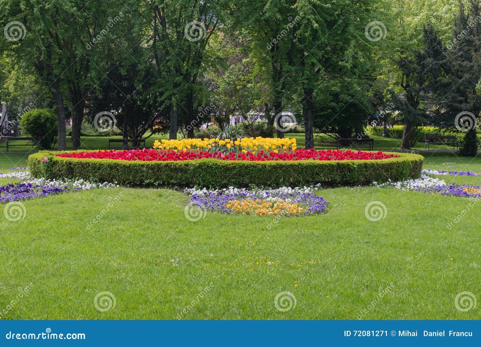 blumen bett in einem formalen garten stockbild bild von gelb gras 72081271. Black Bedroom Furniture Sets. Home Design Ideas