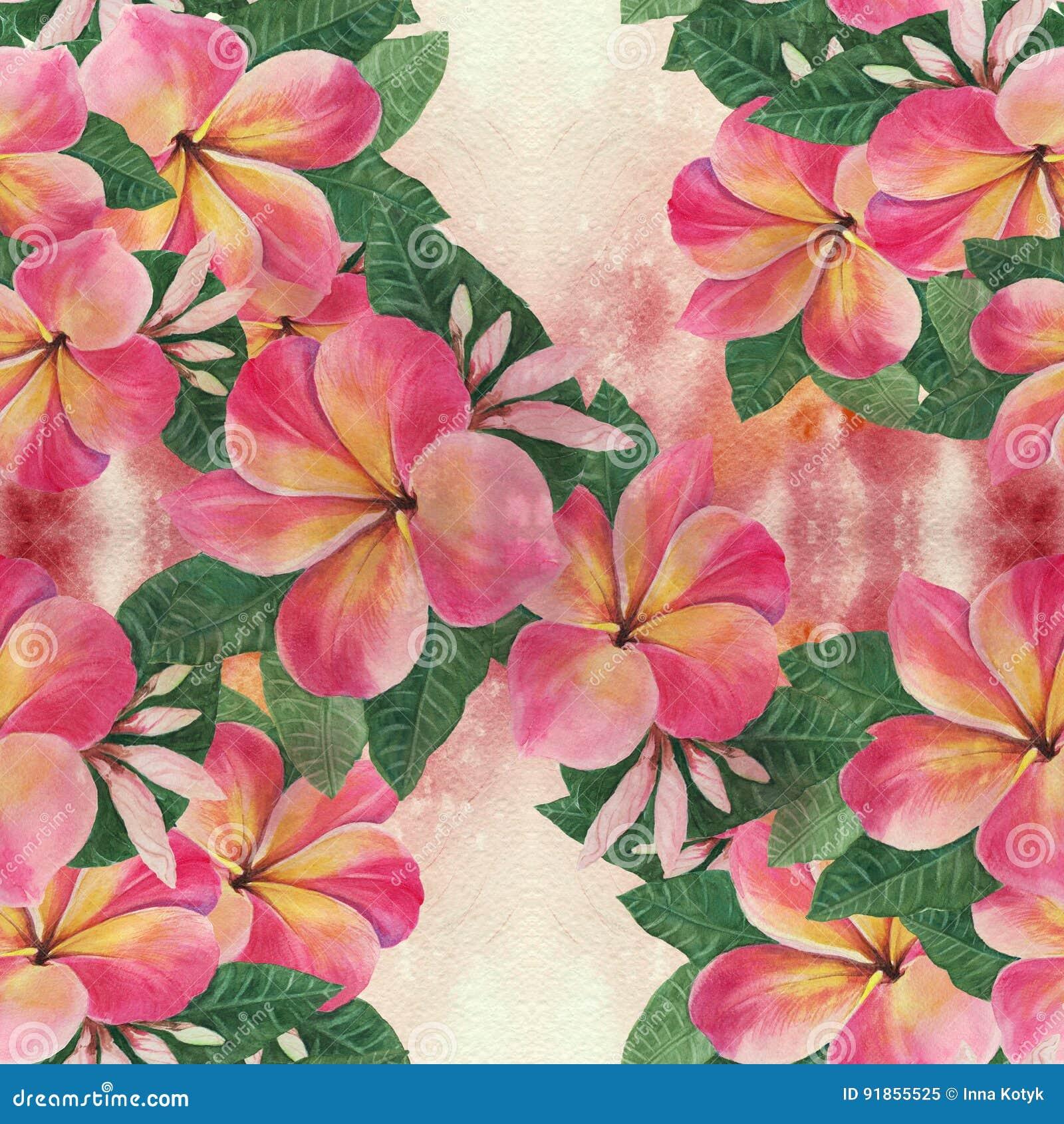 Blumen Blätter Und Knospen Von Plumeria Altes Gelbes Papier Auf