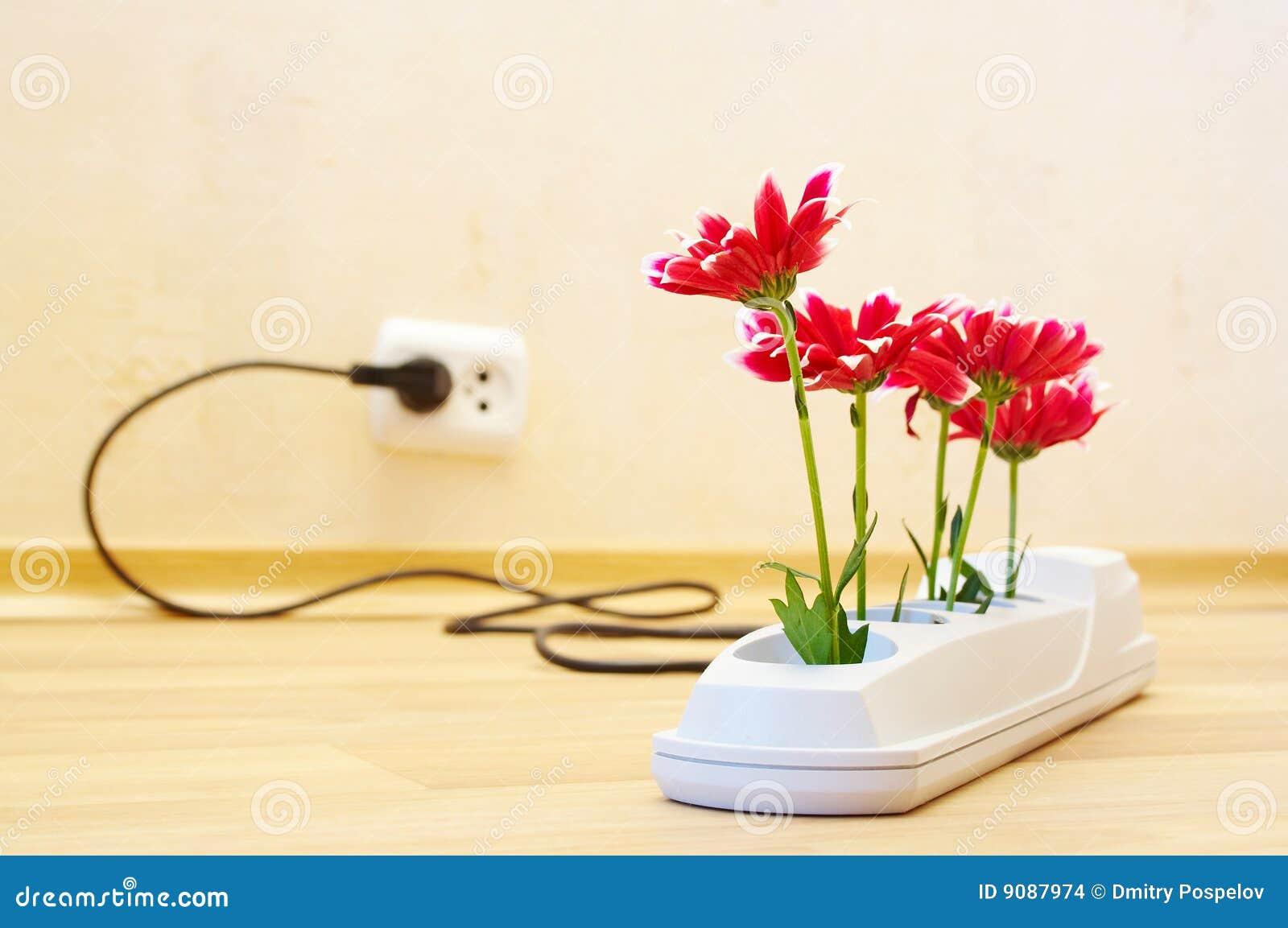 Blumen in der Einfaßung