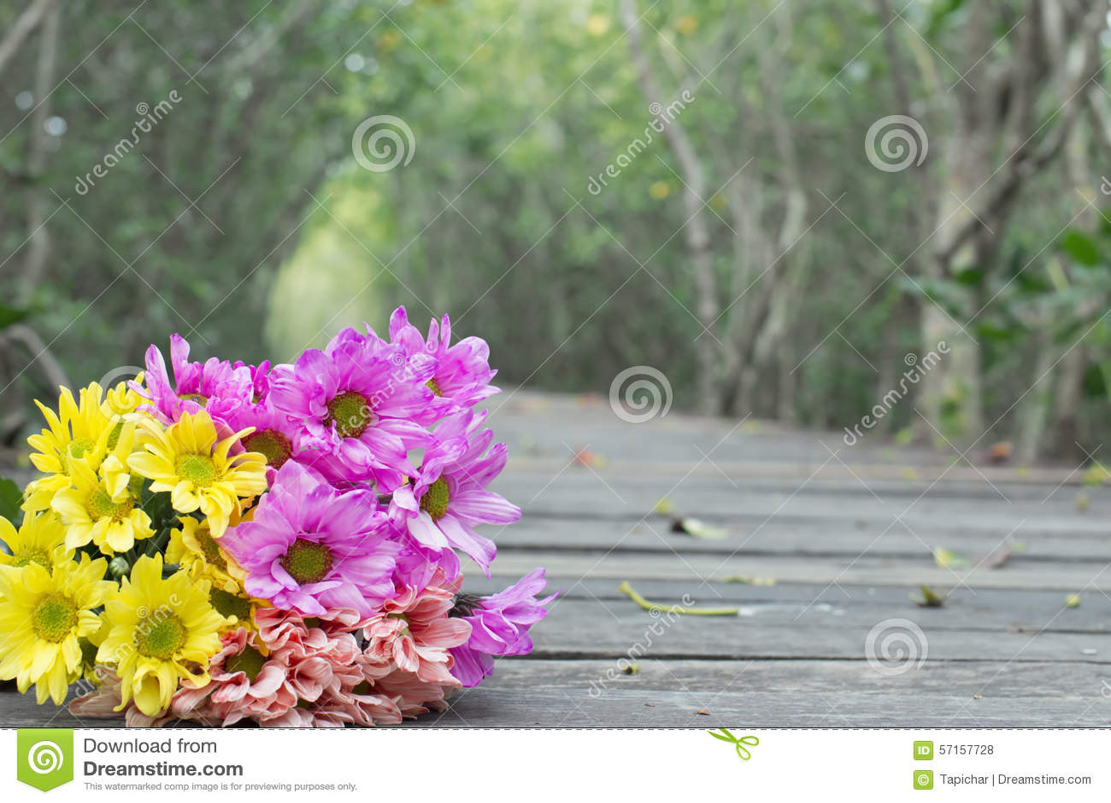 Holzfußboden Legen ~ Blumen die auf den holzfußboden legen stockfoto bild von