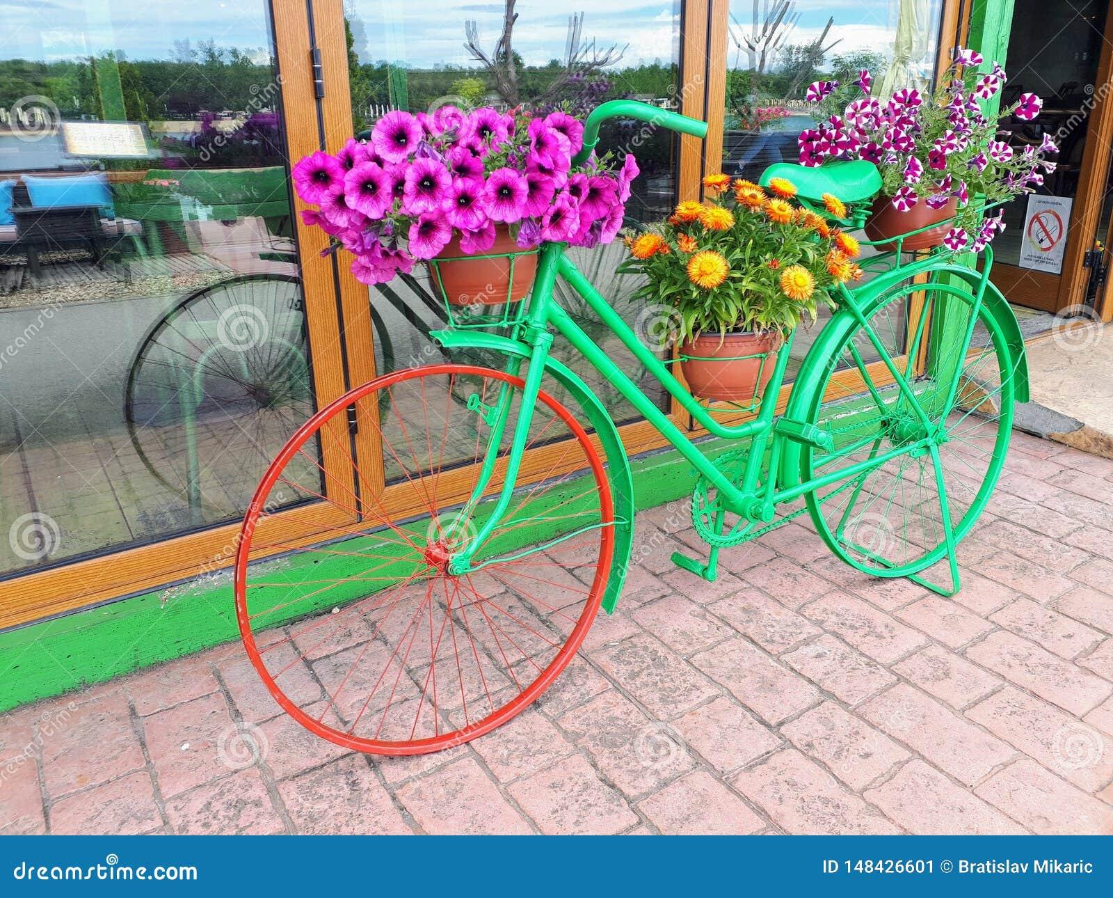 Blumen-Fahrrad auf Binneninsel Ada