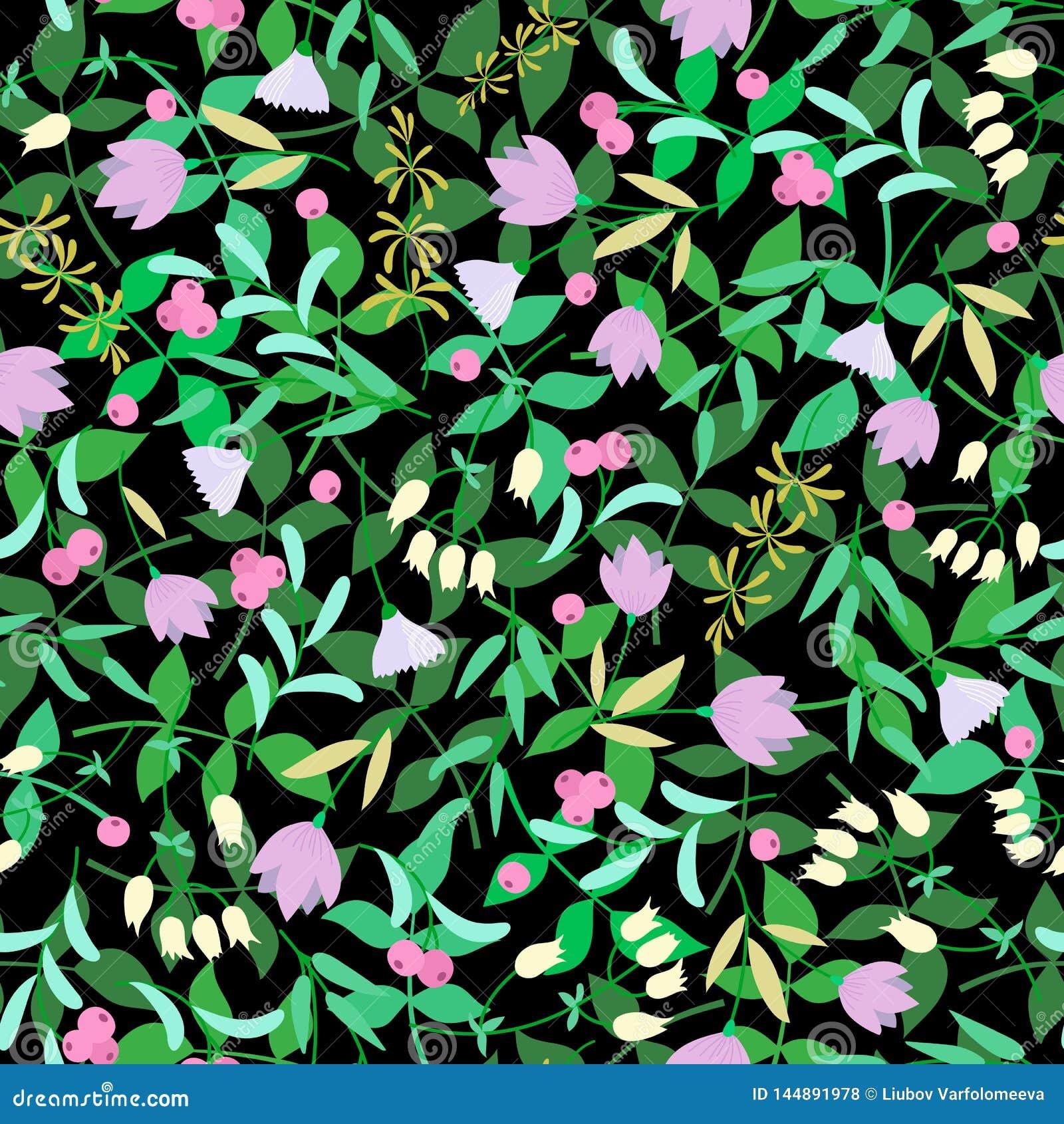Blumen, gr?ne Bl?tter auf dem schwarzen Hintergrund Sommerblumenvektor
