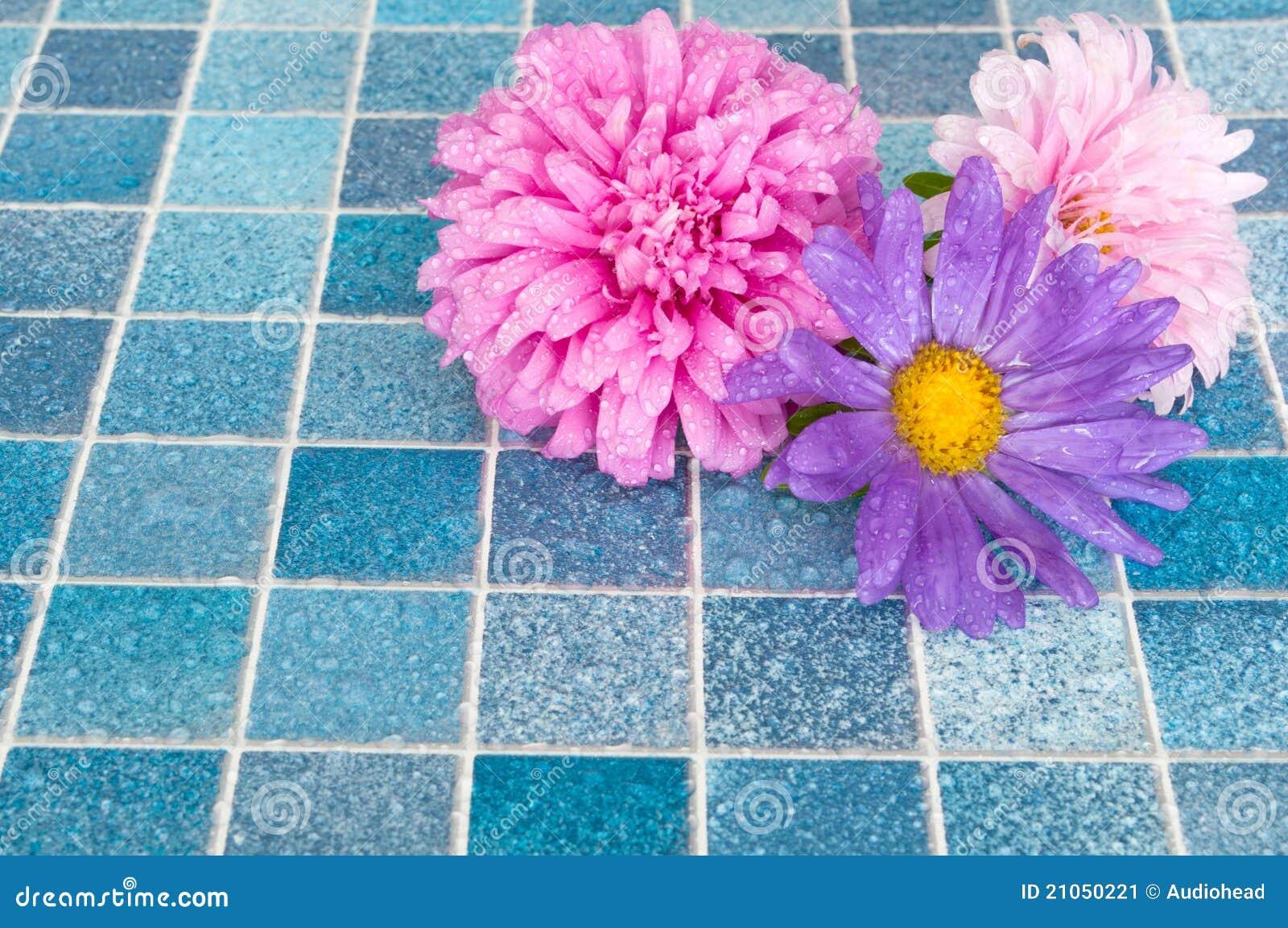 Blumen im Badezimmer stockbild. Bild von schwimmen, medizin - 21050221