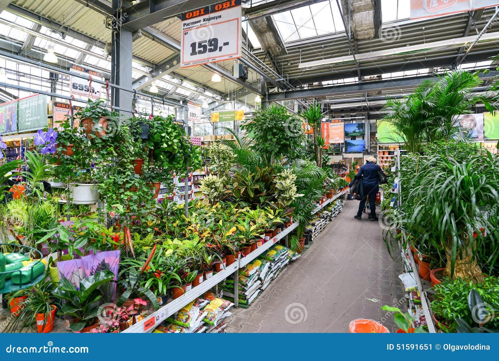 Sehr Blumen Im OBI-Speicher Von Moskau Russland Y Redaktionelles Foto  SJ09