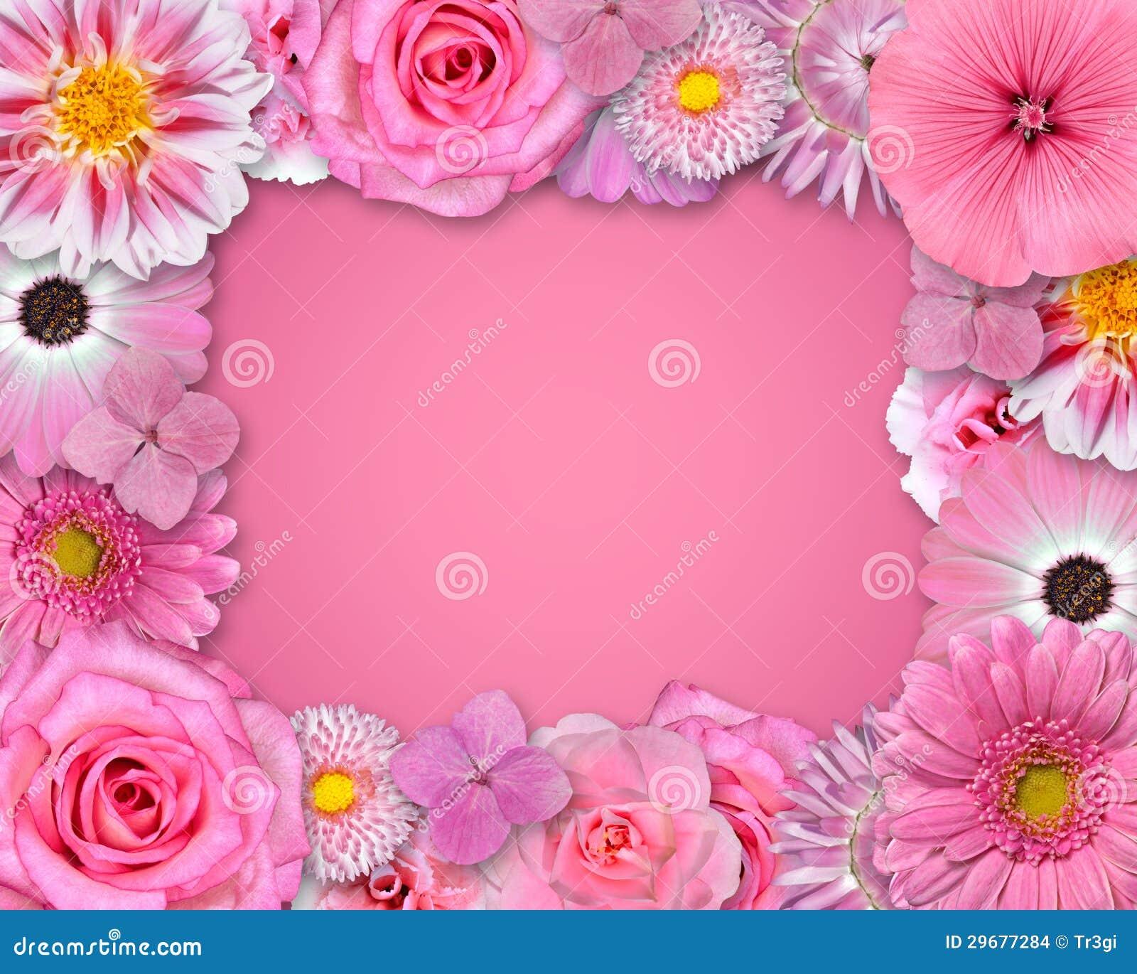 blumen rahmen mit rosa blumen stockbilder bild 29677284. Black Bedroom Furniture Sets. Home Design Ideas