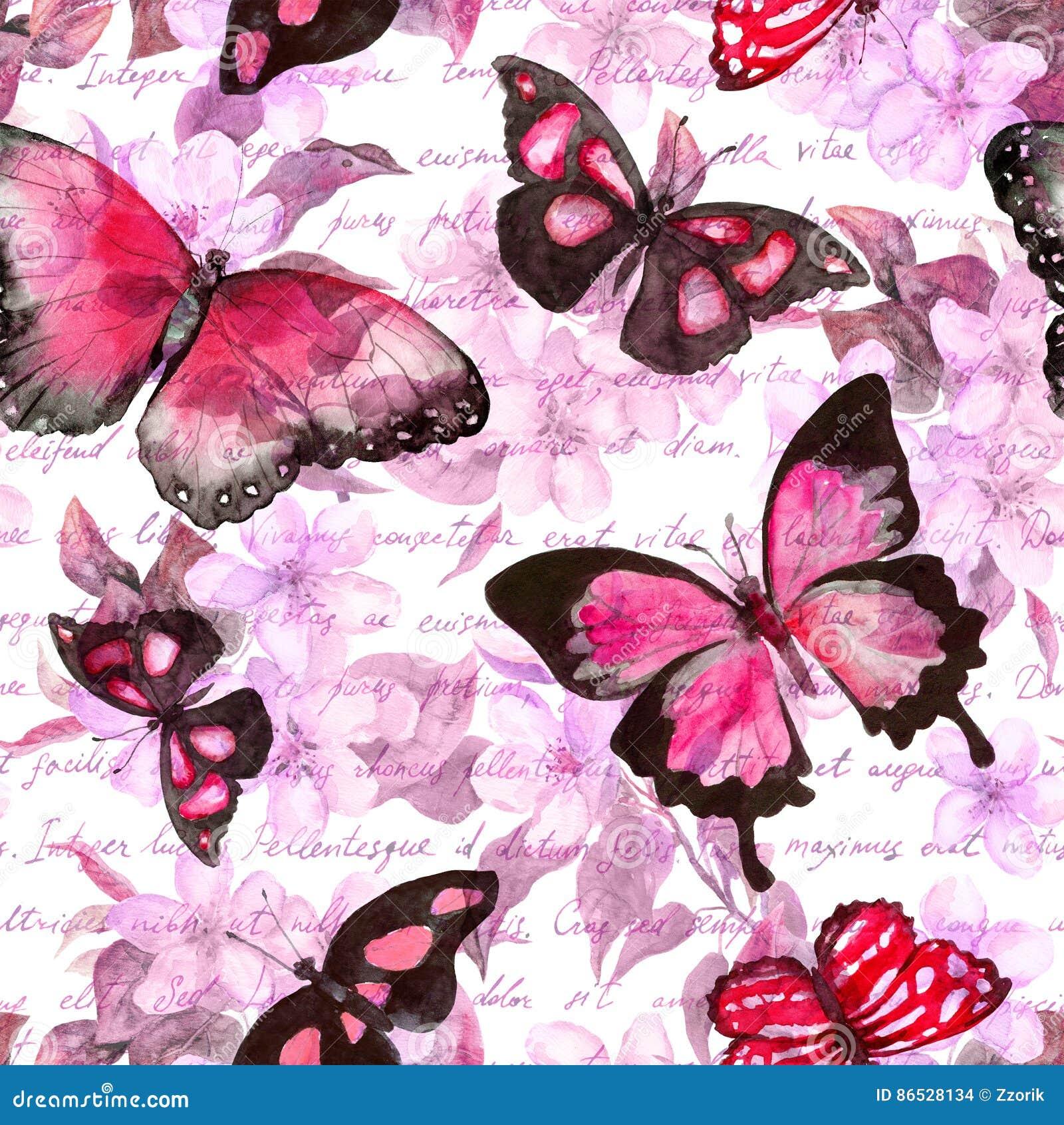 Blumen Schmetterlinge Anmerkung Des Handschriftlichen Textes