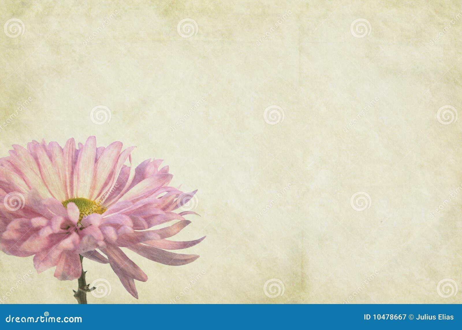 Blumen-themenorientierter Papierhintergrund