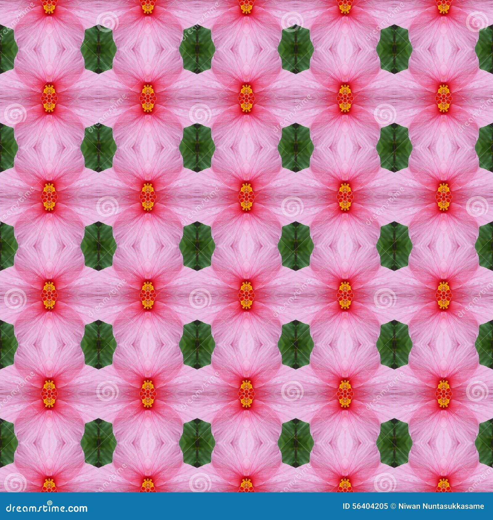 Blumenblatt der rosa Hibiscusblume nahtlos