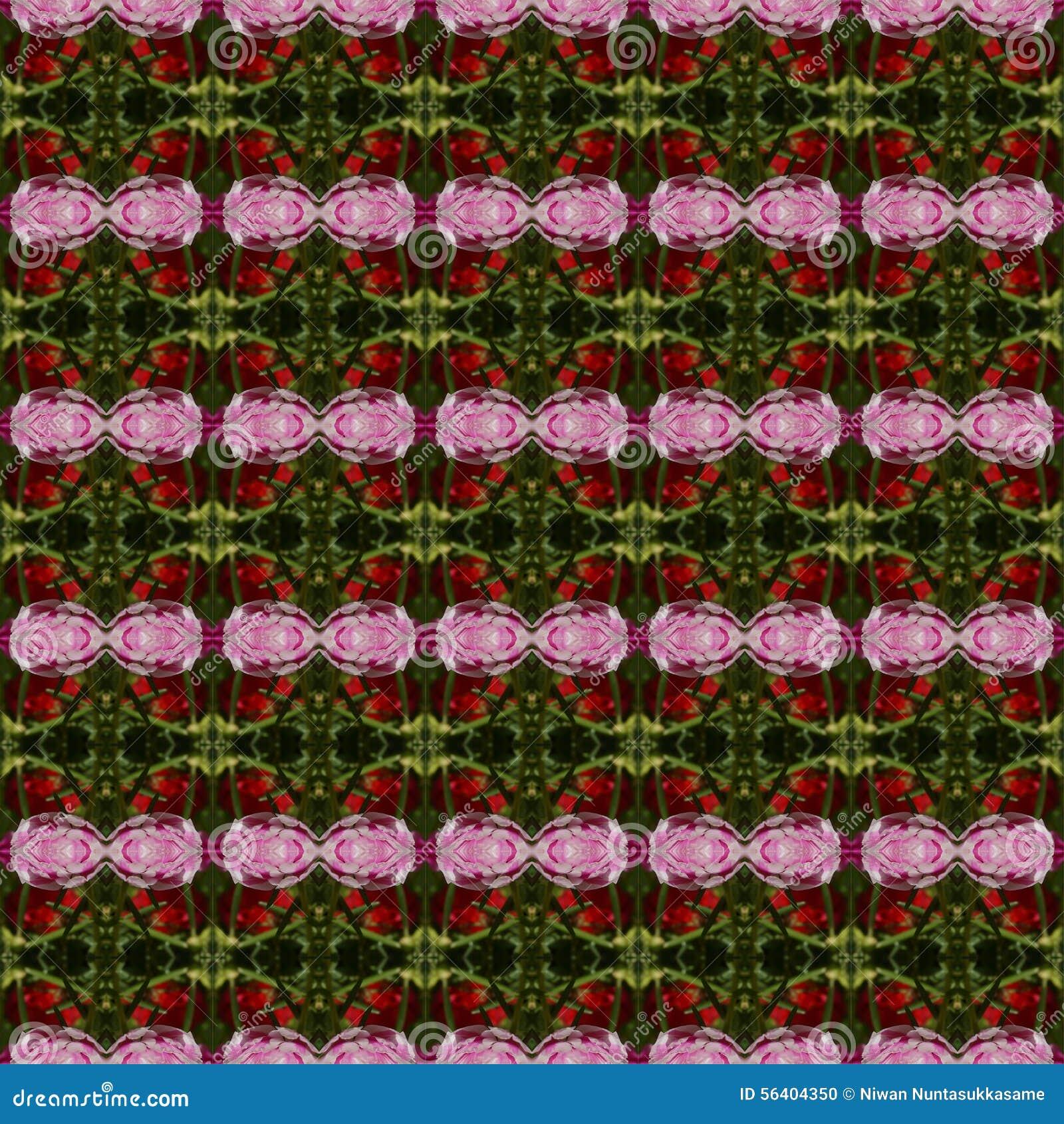 Blumenblatt von rosa Portulaca-Blume nahtlos