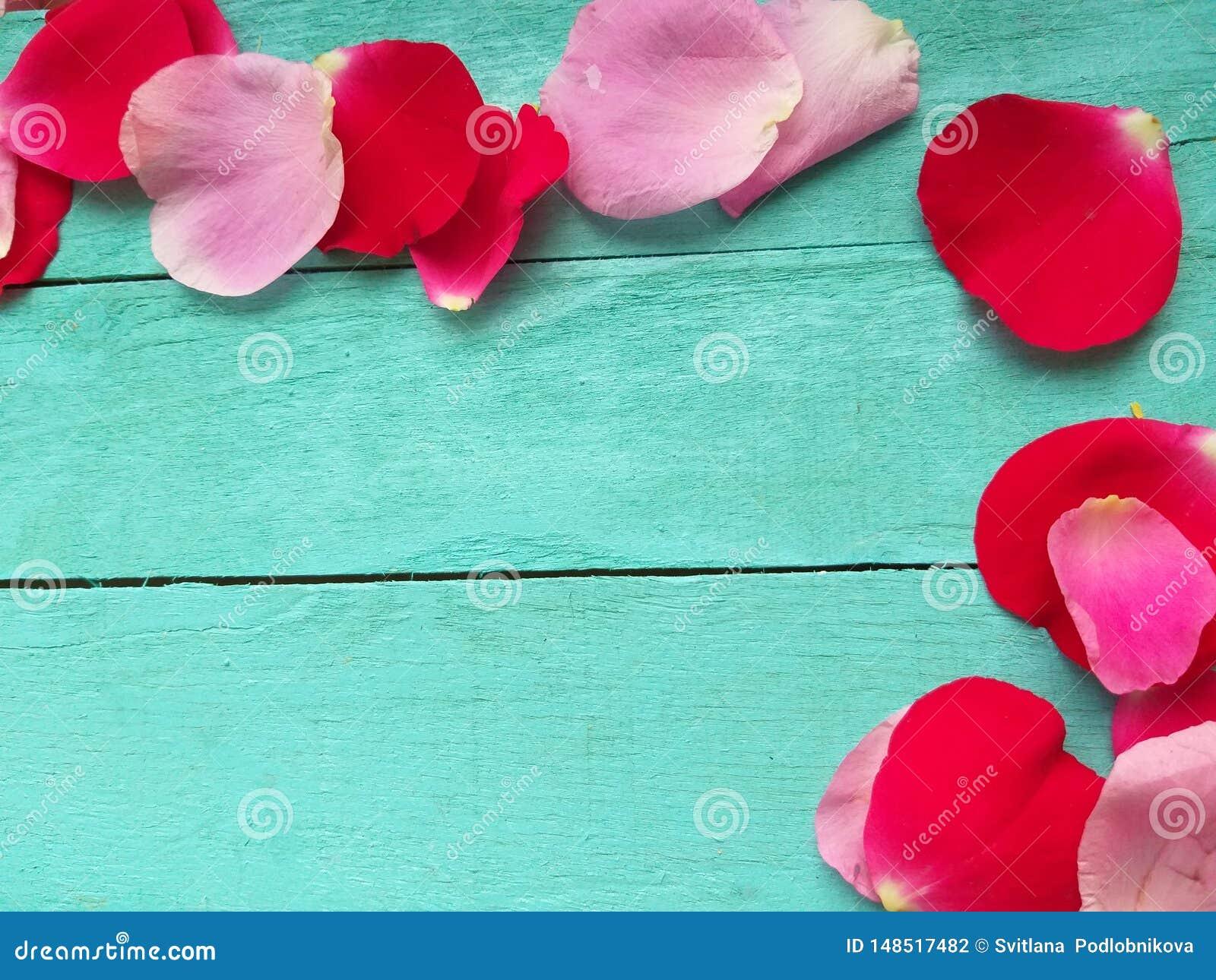 Blumenblattrosen auf hölzernem Hintergrund, Valentinsgrußtag