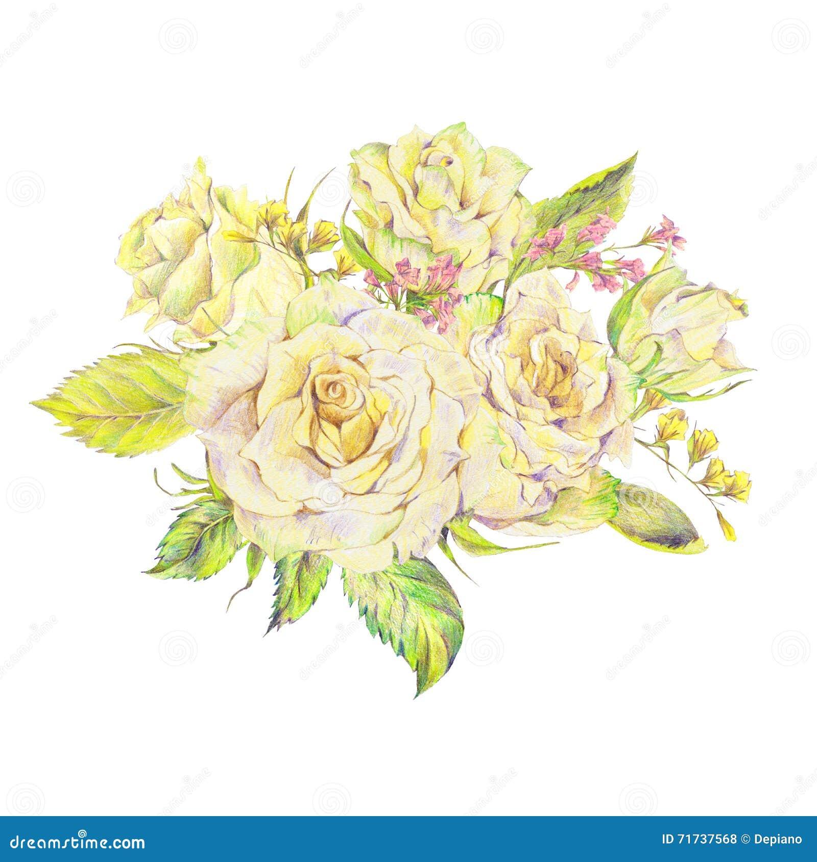 Blumenhand Gezeichneter Blumenstrauß Mit Weißen Rosen Und Wilden
