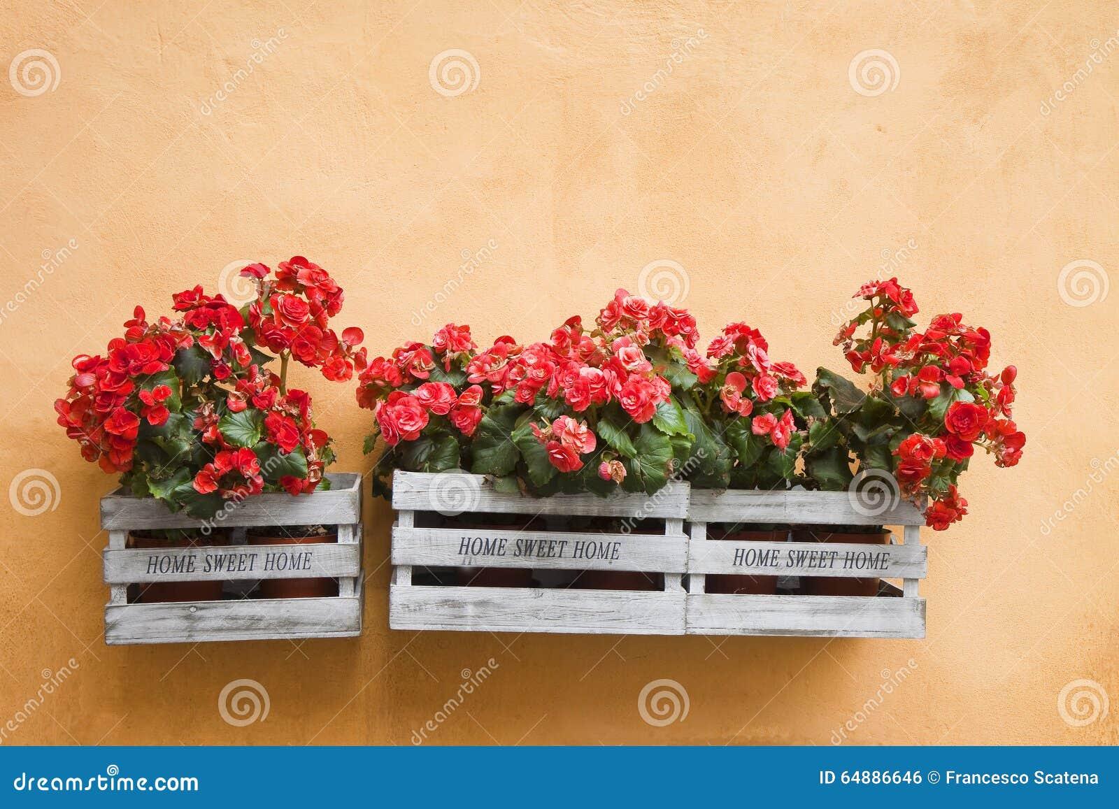 Blumenkästen, Die An Der Wand Hängen Stockfoto - Bild von konzept ...