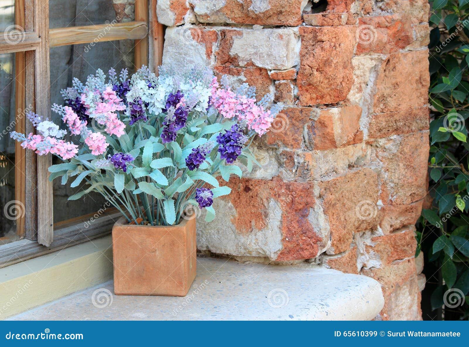 Blumenkasten im Fenster stockbild. Bild von schönheit - 65610399