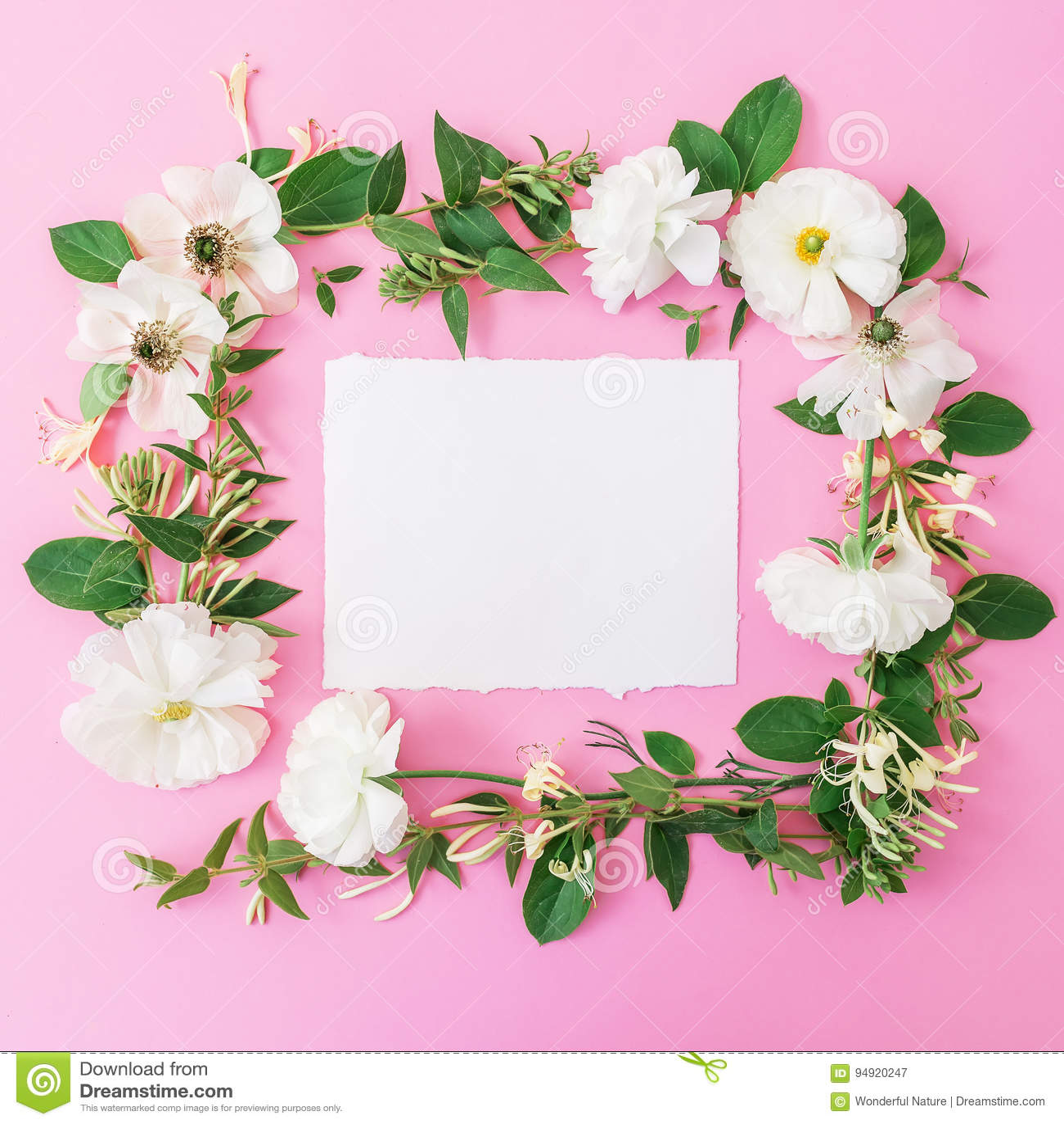 Blumenrahmen Gemacht Von Den Weißen Blumen Und Von Den Blättern Auf ...