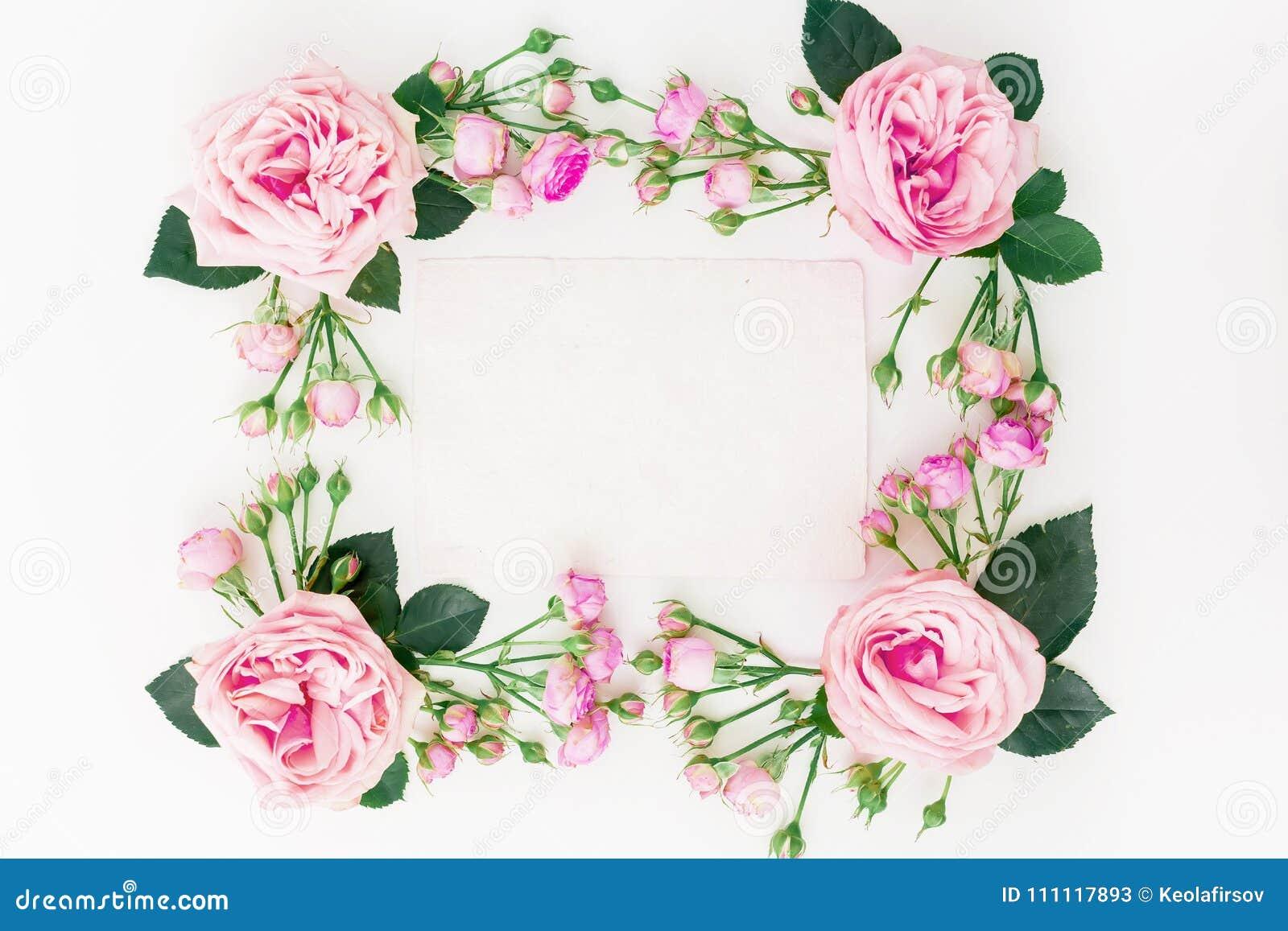 Blumenrahmen Mit Rosa Rosen, Den Knospen, Den Blättern Und ...
