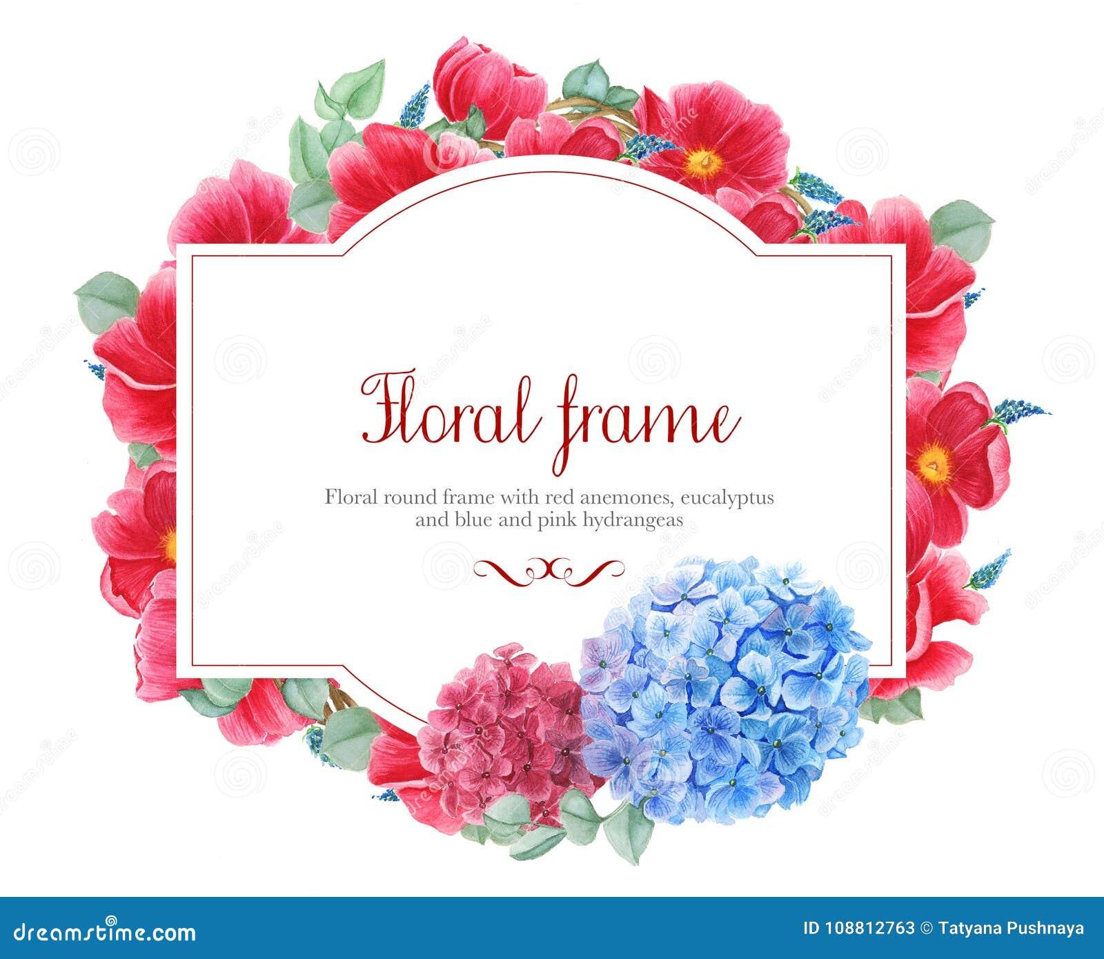 Blumenrahmen mit roten Anemonen, rosa und blaue Hortensie und Niederlassungen des Eukalyptus, Aquarellmalerei