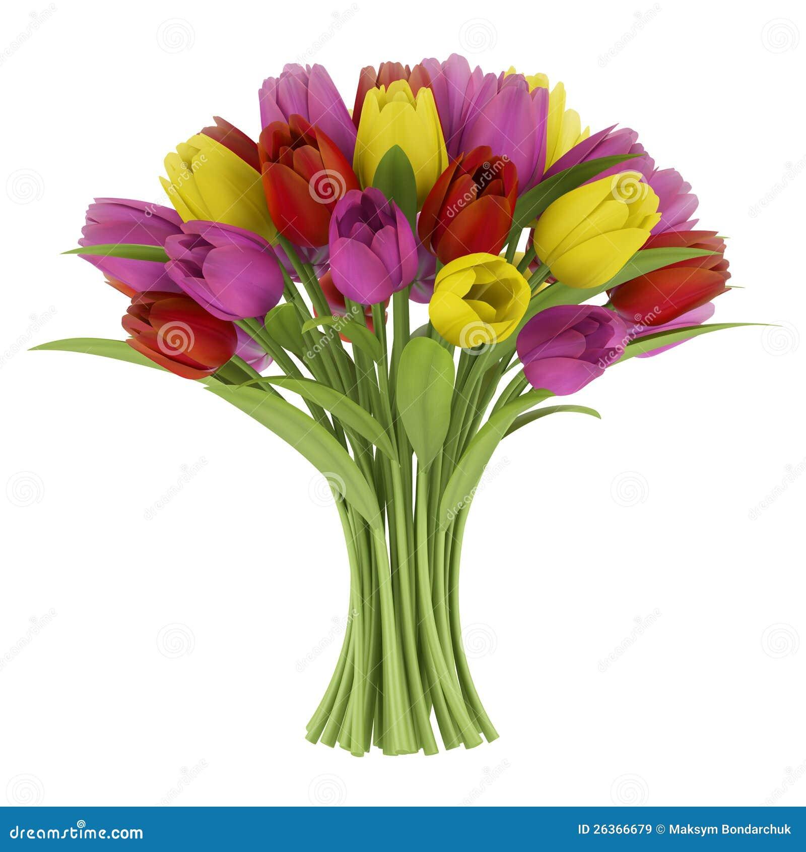 Blumenstrauß der Tulpen getrennt auf Weiß