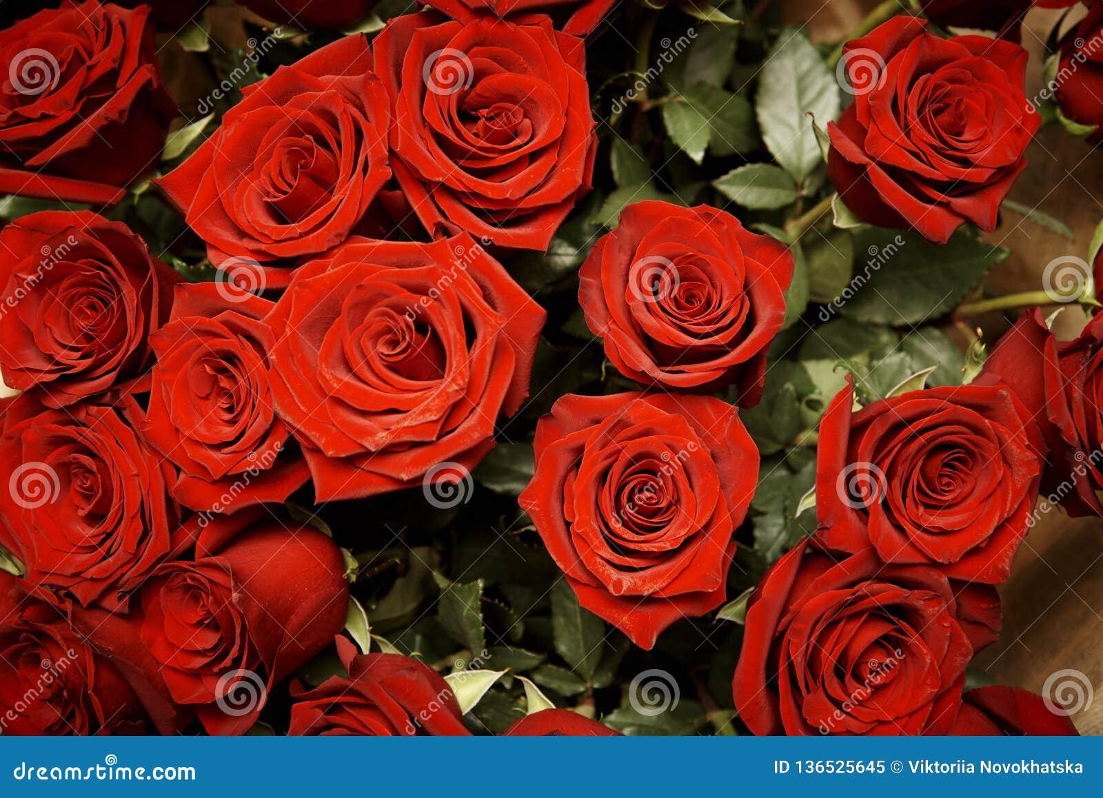 Blumenstrauß von blühenden dunkelroten Rosen