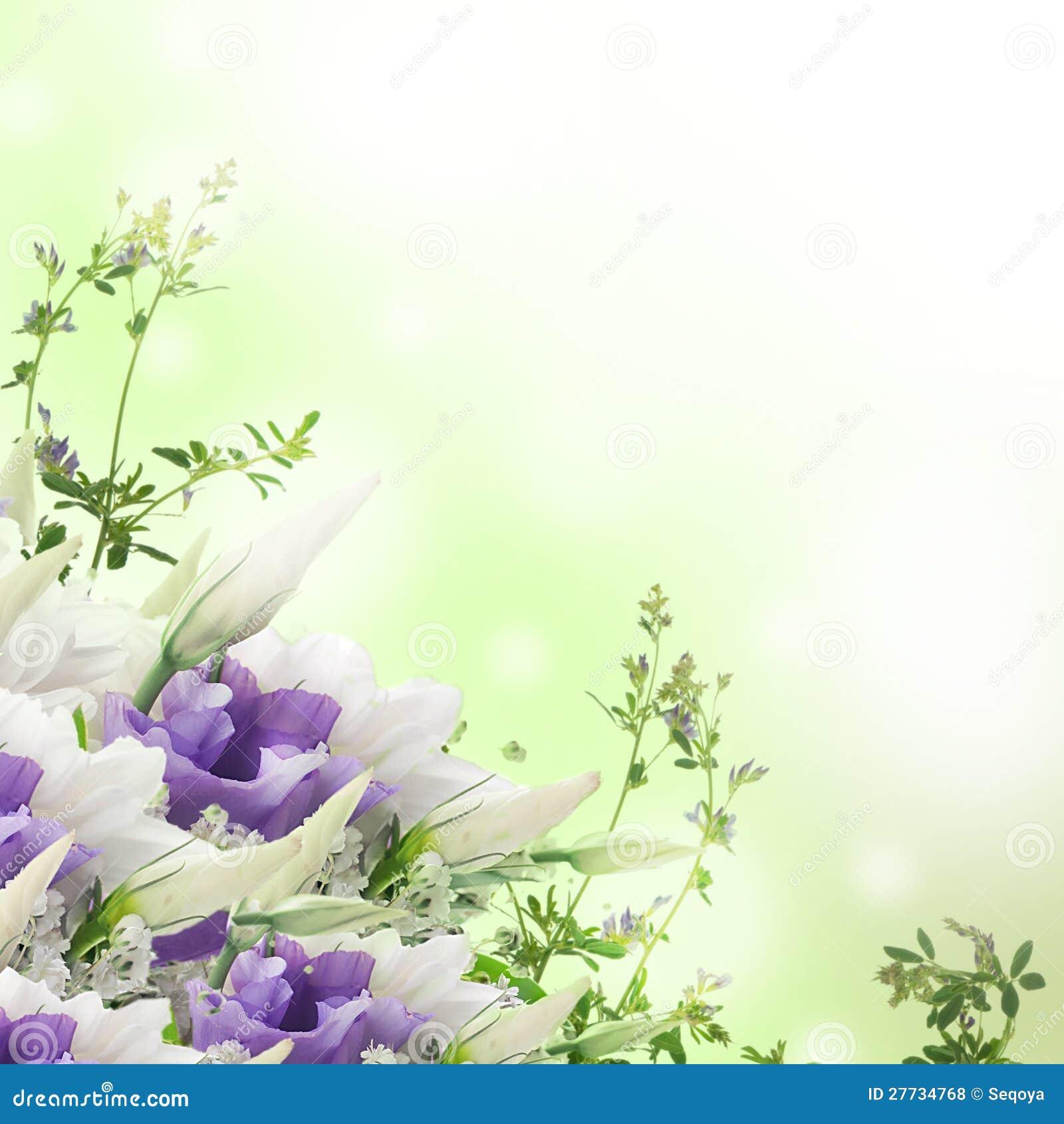 Blumenstrauß von den weißen und rosafarbenen Blumen