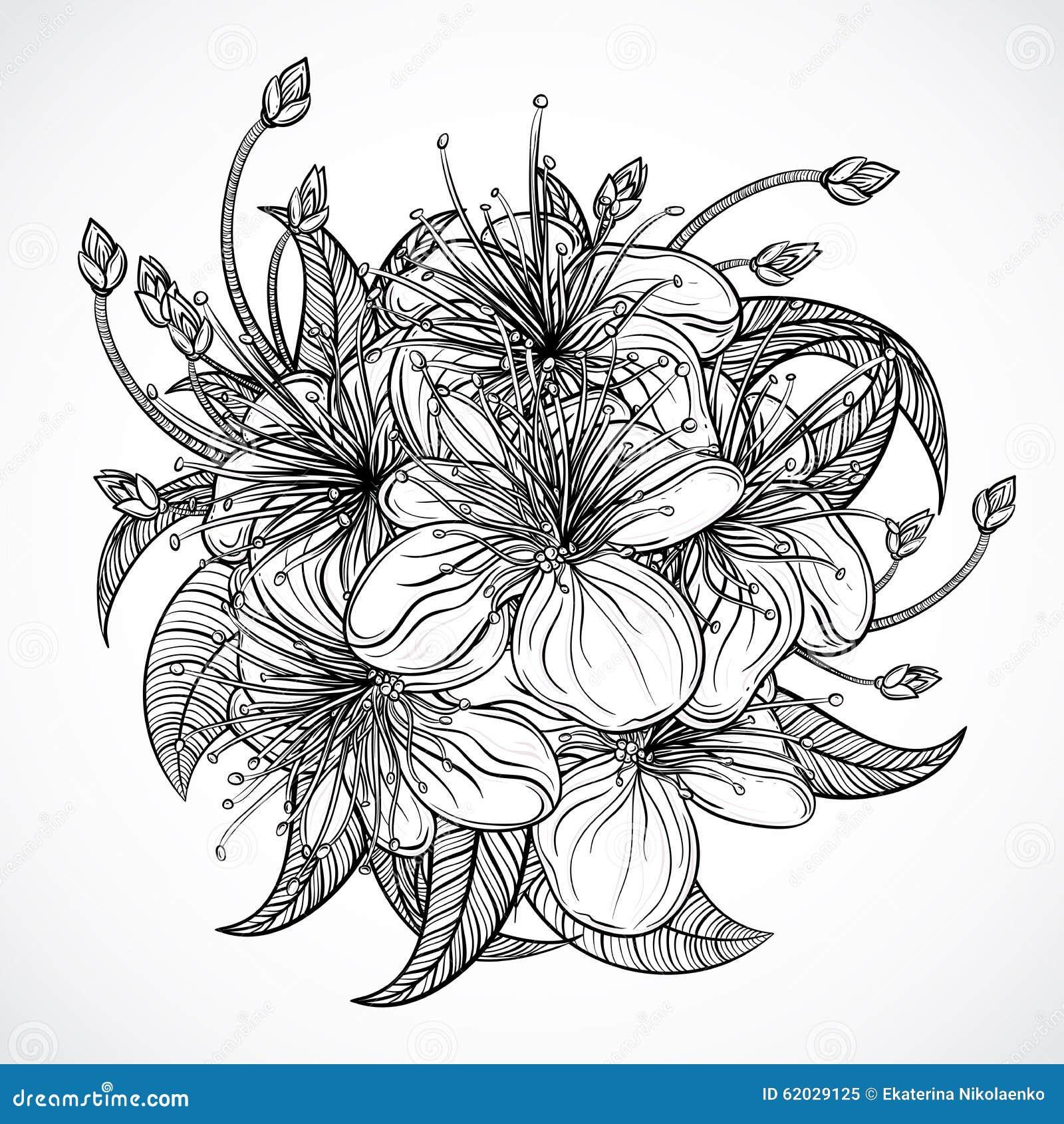 Blumenstrau 223 Der Exotischen Blumen Tropische Schwarzweiss