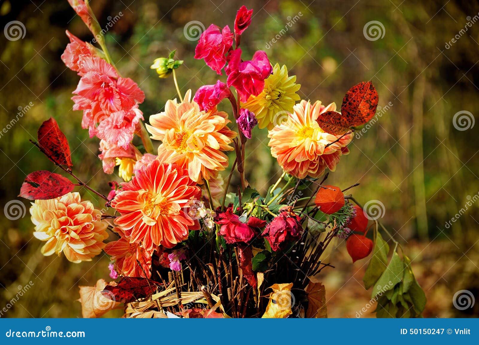 blumenstrau der herbstblumen stockfoto bild 50150247. Black Bedroom Furniture Sets. Home Design Ideas