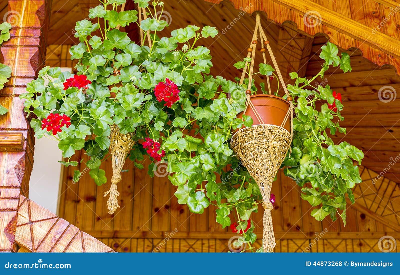 Blumentopfe Mit Den Pelargonien Die Dekorativen Holzernen Balkon