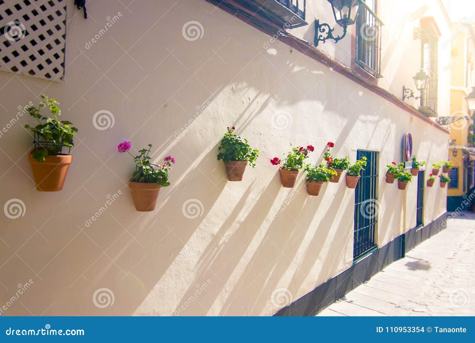 Blumentopfe Und Blumen Auf Einer Weissen Wand Alte Europaische Stadt
