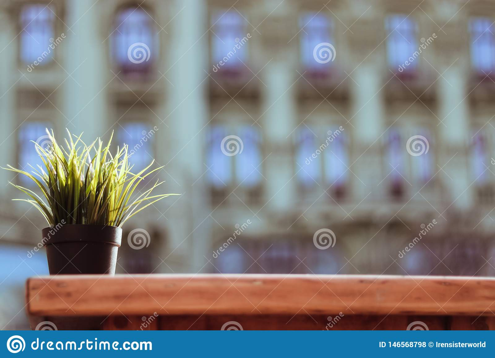 Blumentopf auf h?lzerner Tabelle
