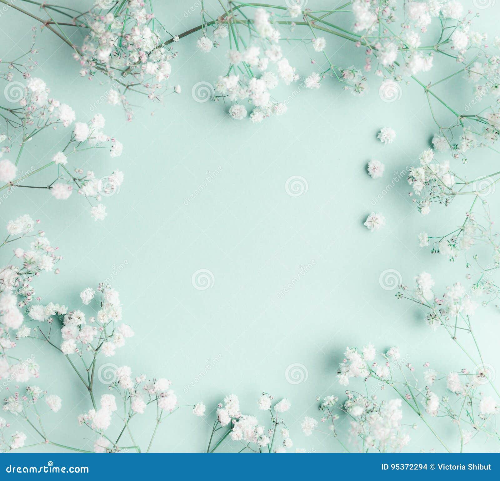 Blumenzusammensetzung mit Licht, luftige Massen von kleinen weißen Blumen auf Türkisblauhintergrund, Draufsicht, Rahmen