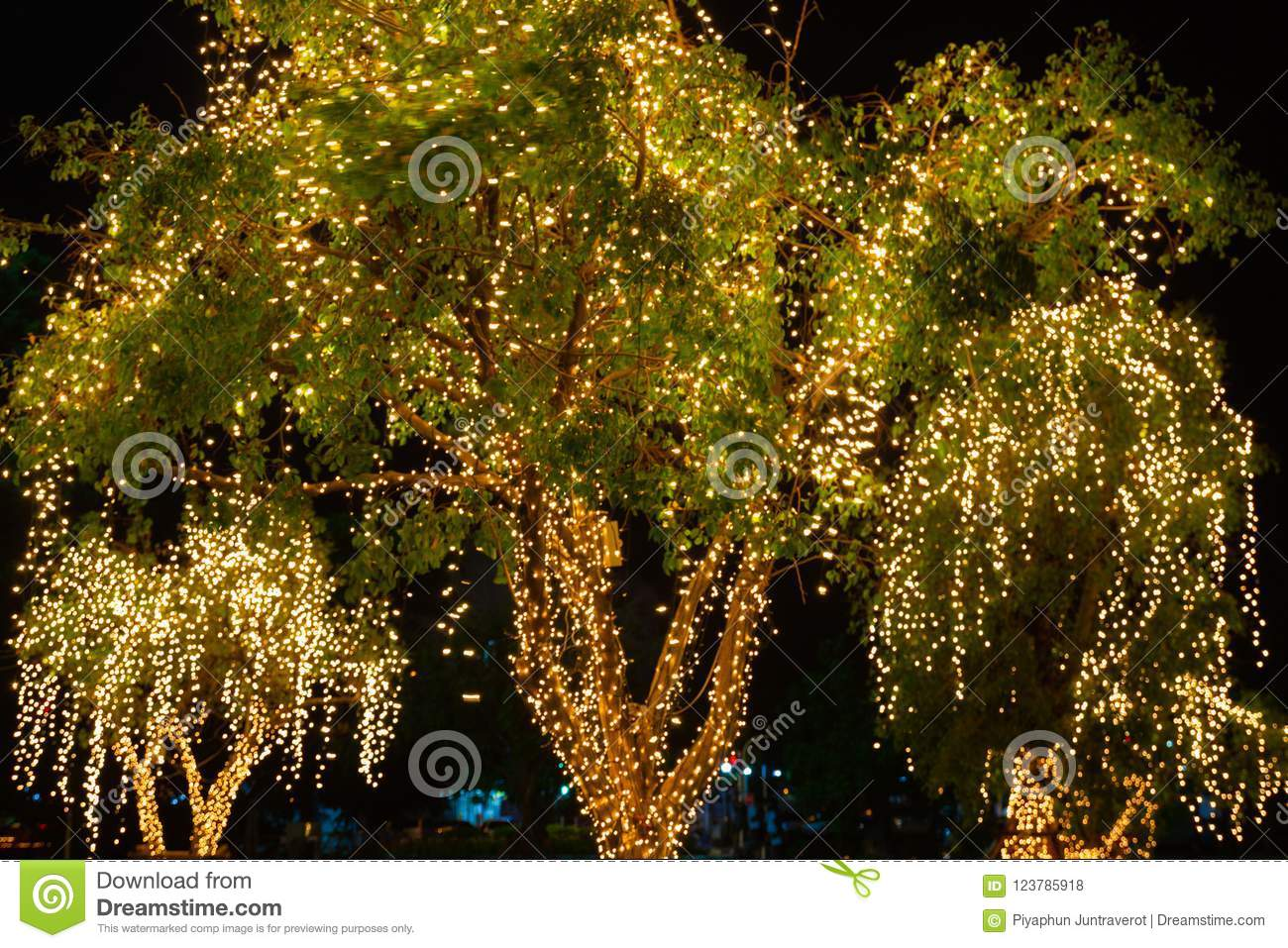 blur bokeh decorative outdoor string lights hanging on tree in the garden at night time decorative christmas lights happy new year - How To Put Christmas Lights On Tree