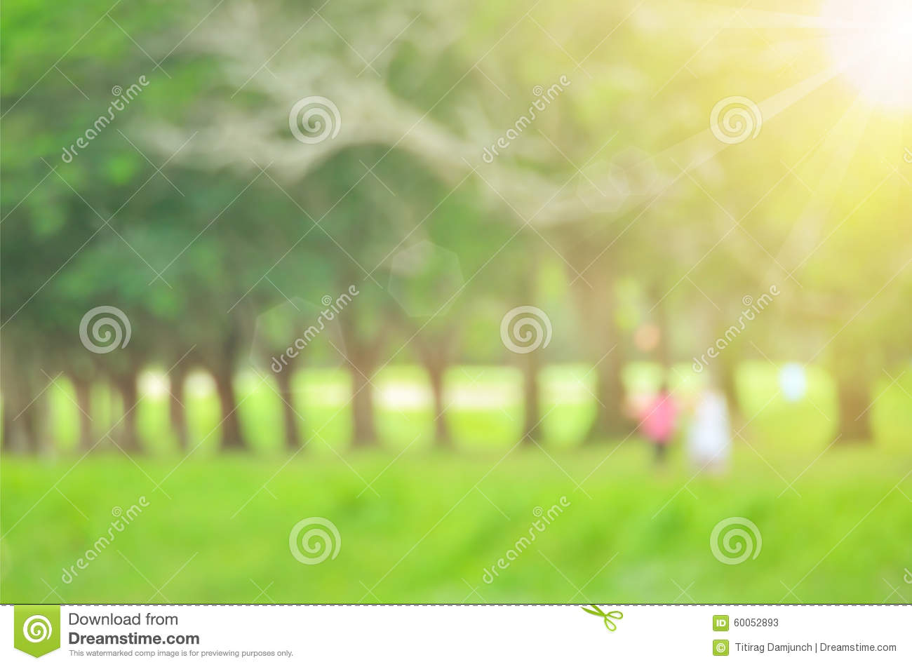 Blur Green Nature Park Abstract Background Stock Image Image Of