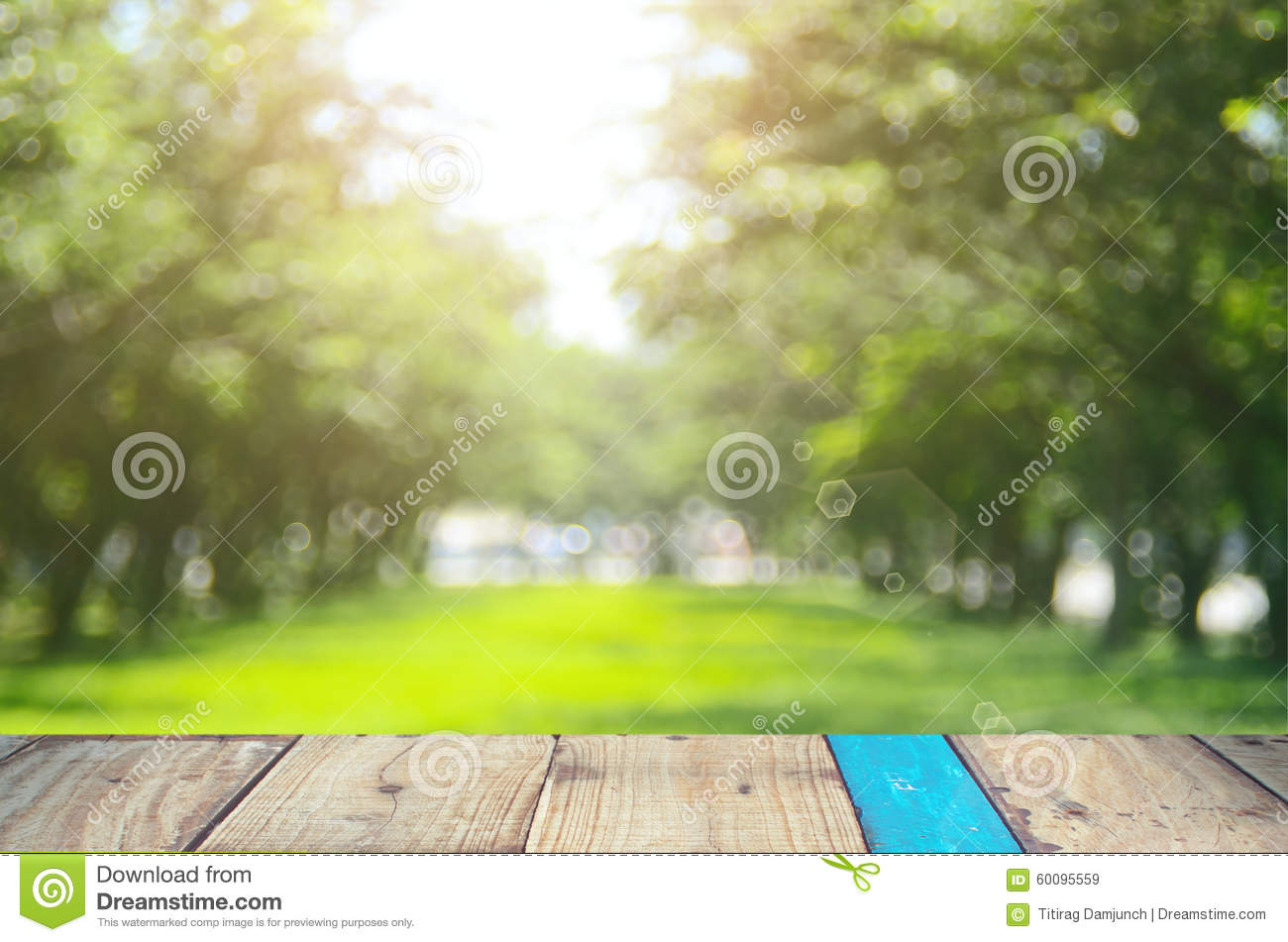 Blur Nature Green Park Abstract Background. Stock Photo - Image ...