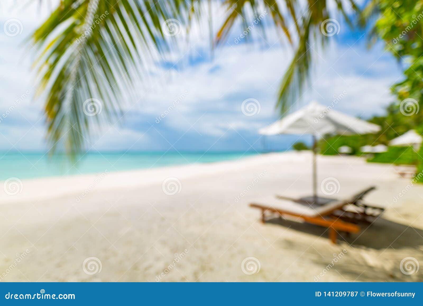 Blur Of Tranquil Beach Scene Palm Leaf On Tropical Beach