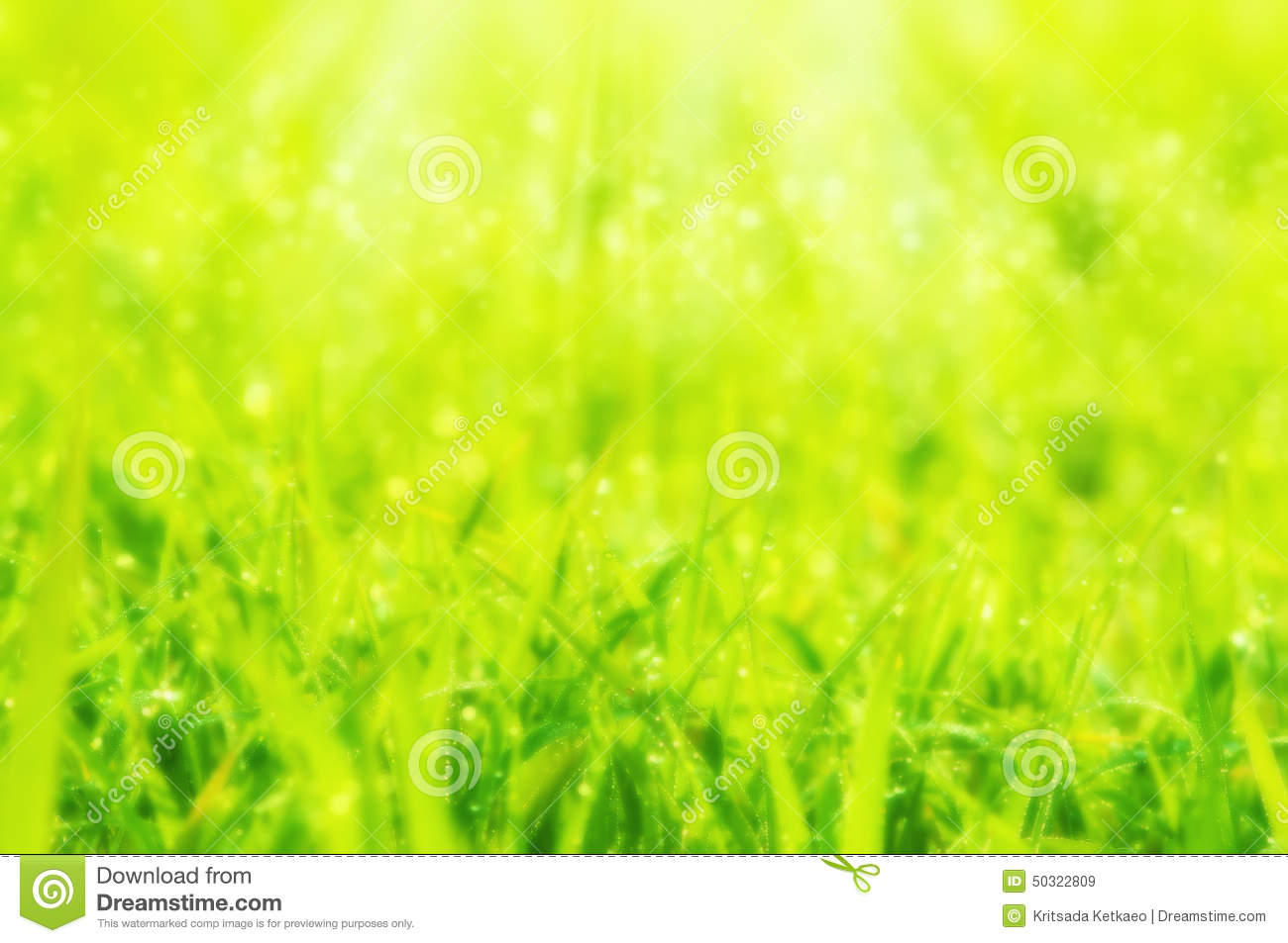 Nature Images 2mb: Blurred Dreamy Soft Focus Spring Or Summer Abstract Nature