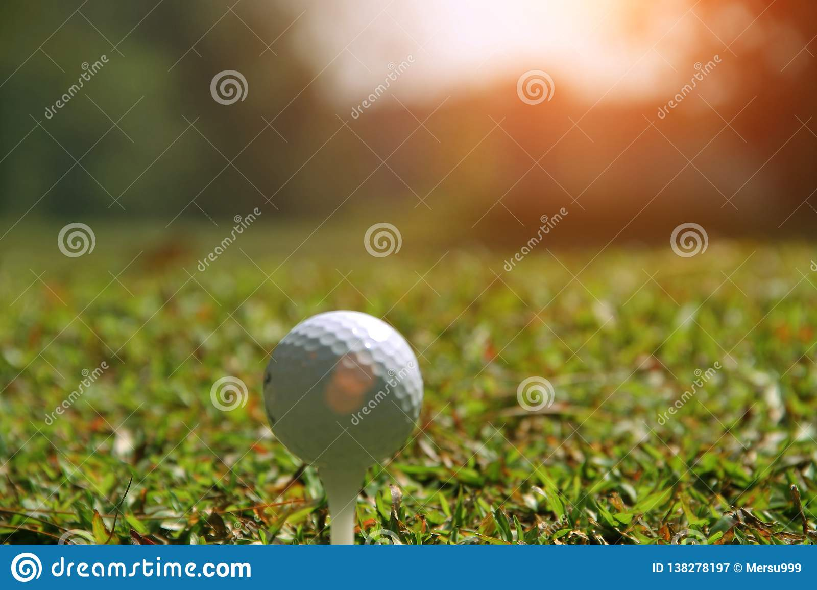 Blurred golf ball on green in the evening golf course