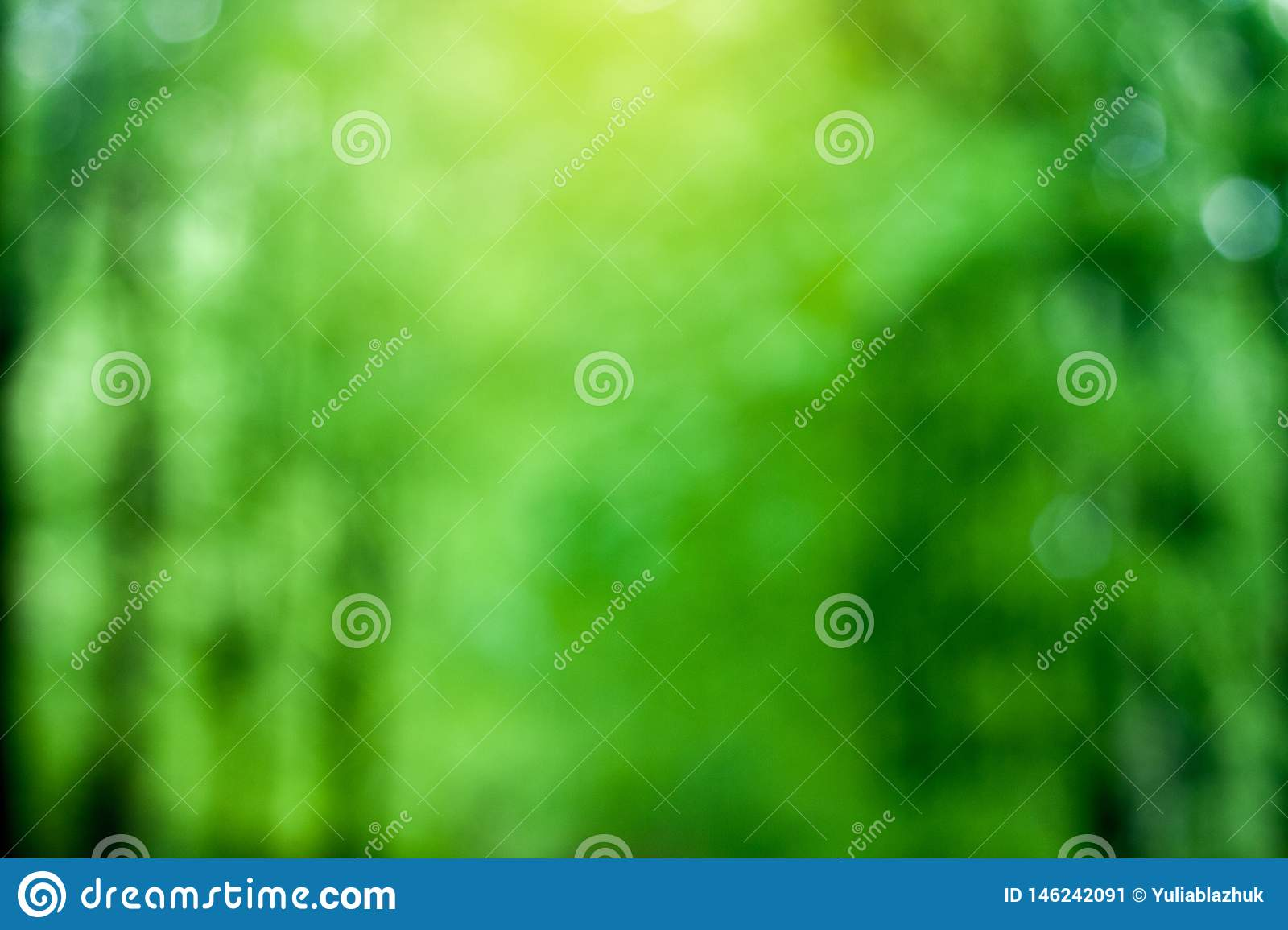 Blurred green trees forest background