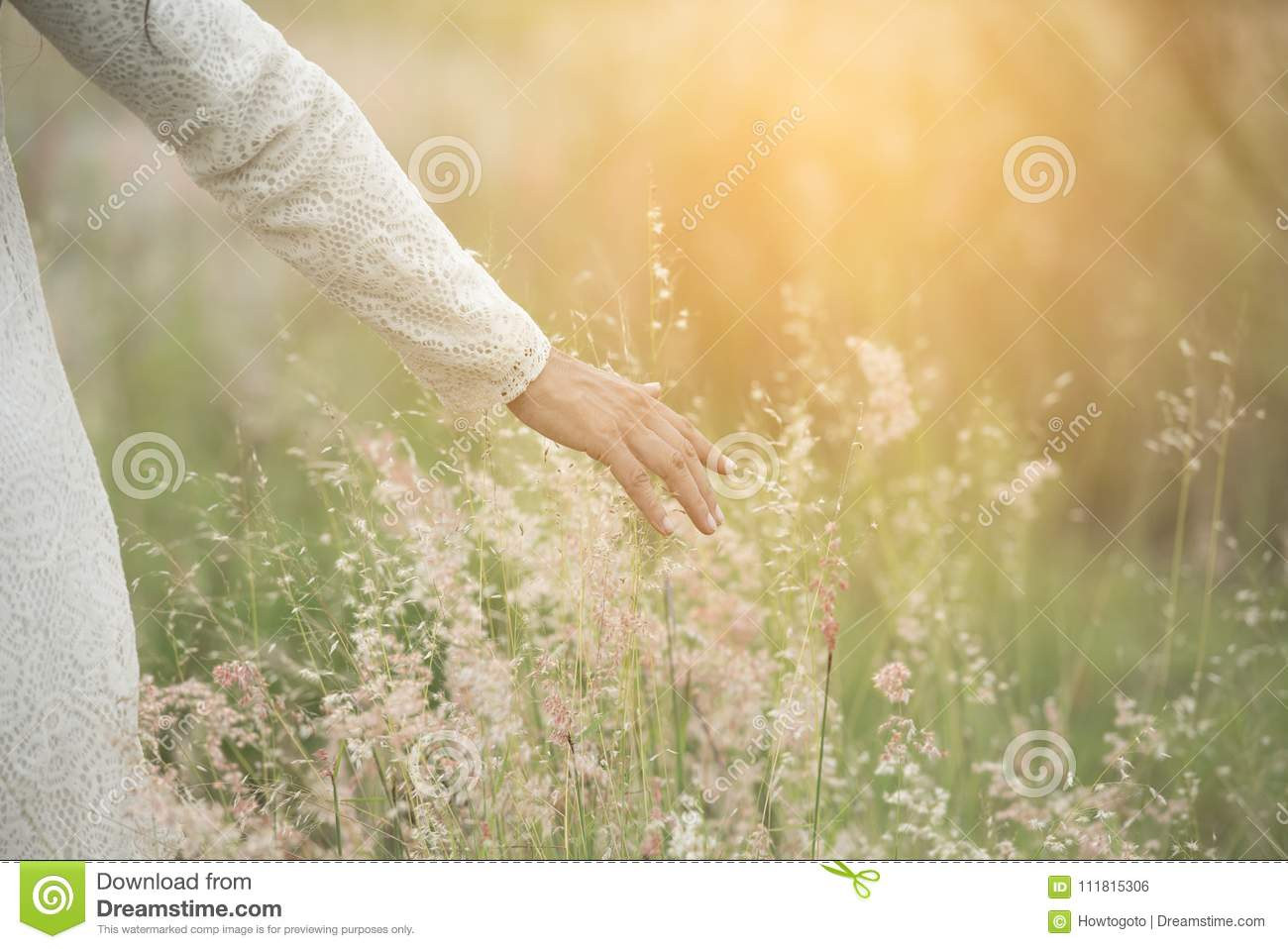 Blurred hand of young beautiful woman touching wheat spikes with her hand at sunset.