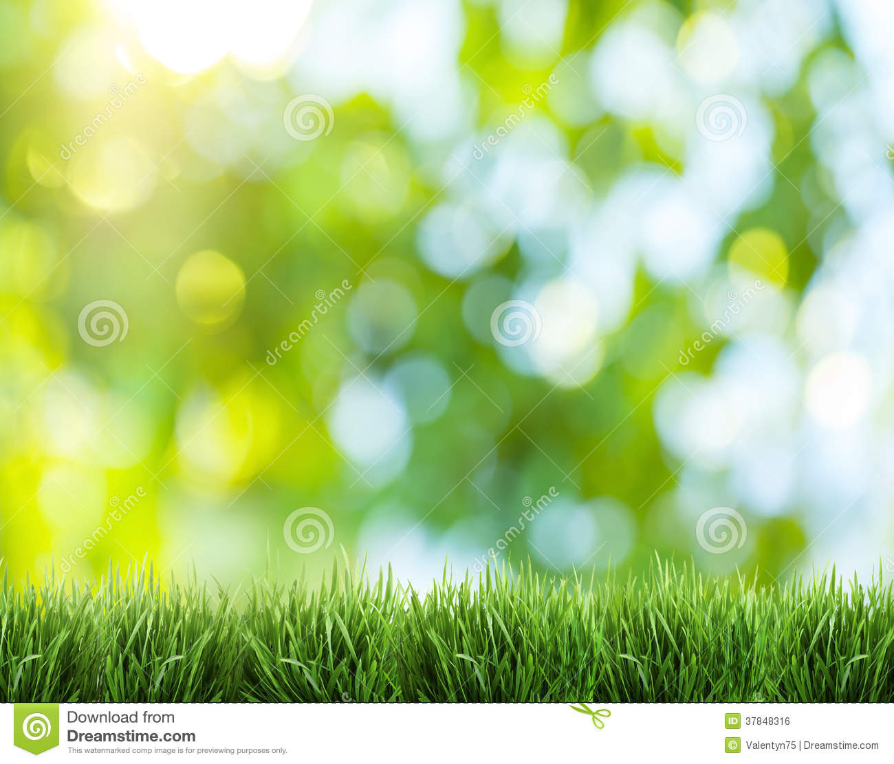 blurred outdoor backgrounds. Fine Outdoor Download Blurred Nature Background Stock Photo Image Of Grass  37848316 In Outdoor Backgrounds E