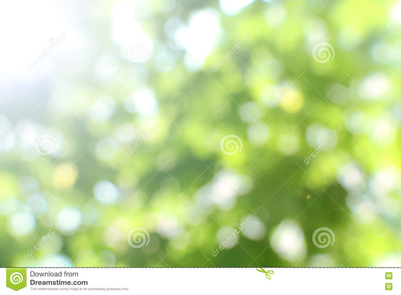 Blurry Green Nature Background 2 Stock Photo Image Of Bokeh
