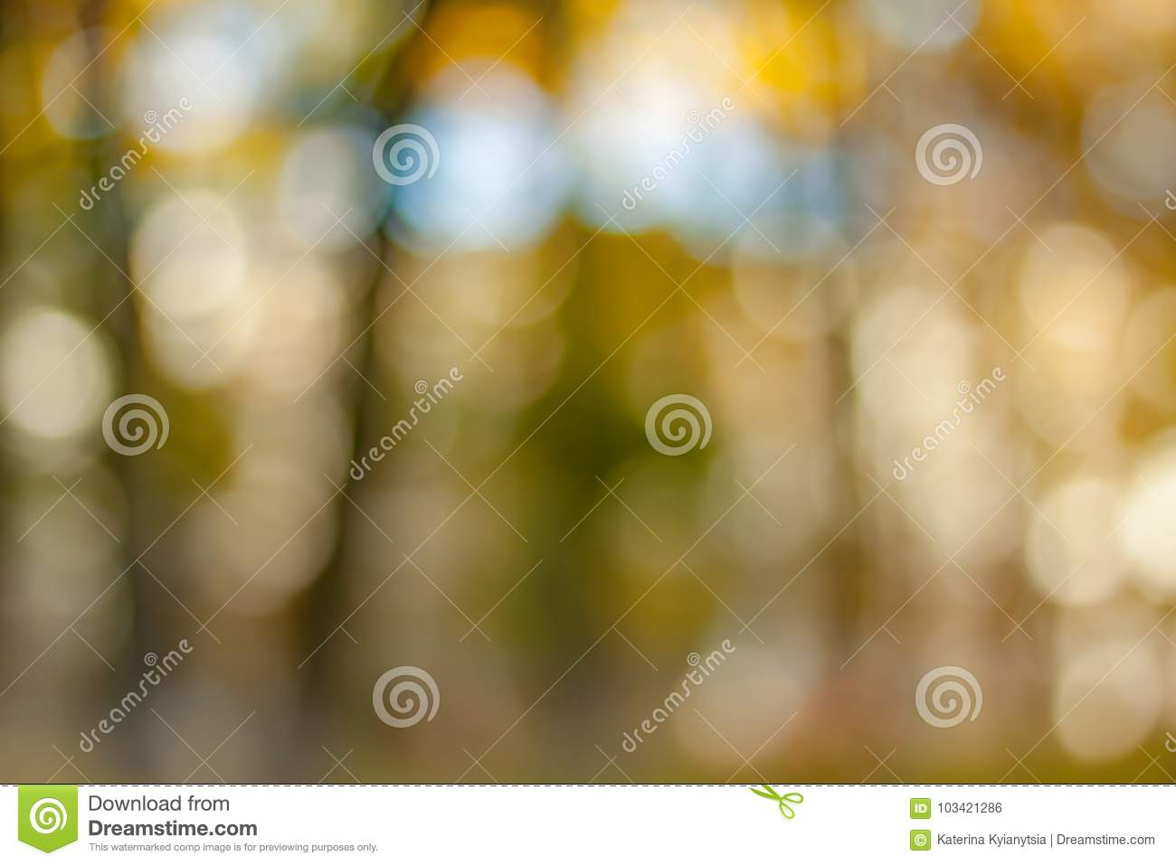 Blurry nature wallpaper. stock photo. Image of leaf ...