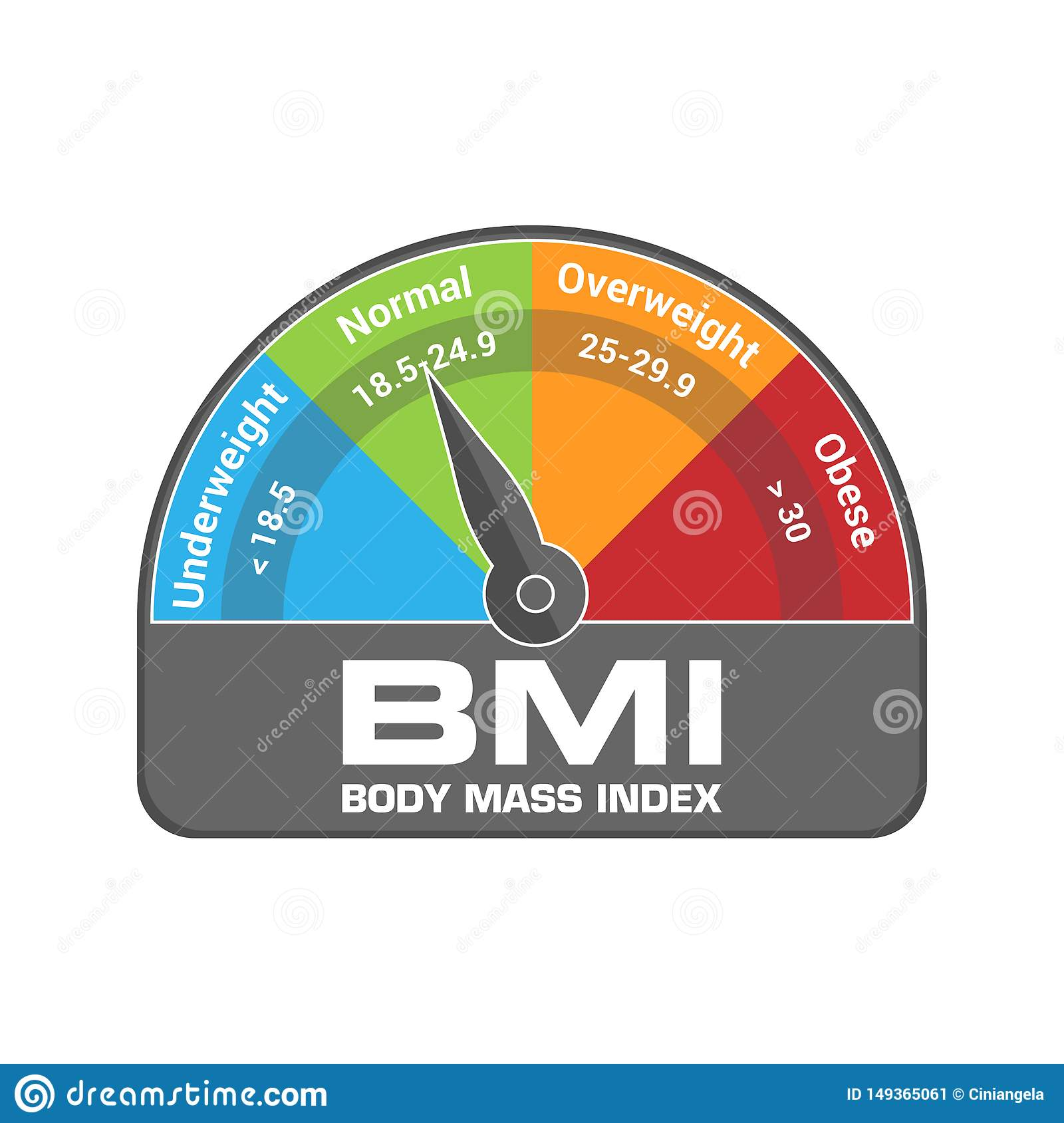 BMI Body Mass Index Calculate Illustration or Infographic Chart. Underweight, Normal, Overweight and Obese