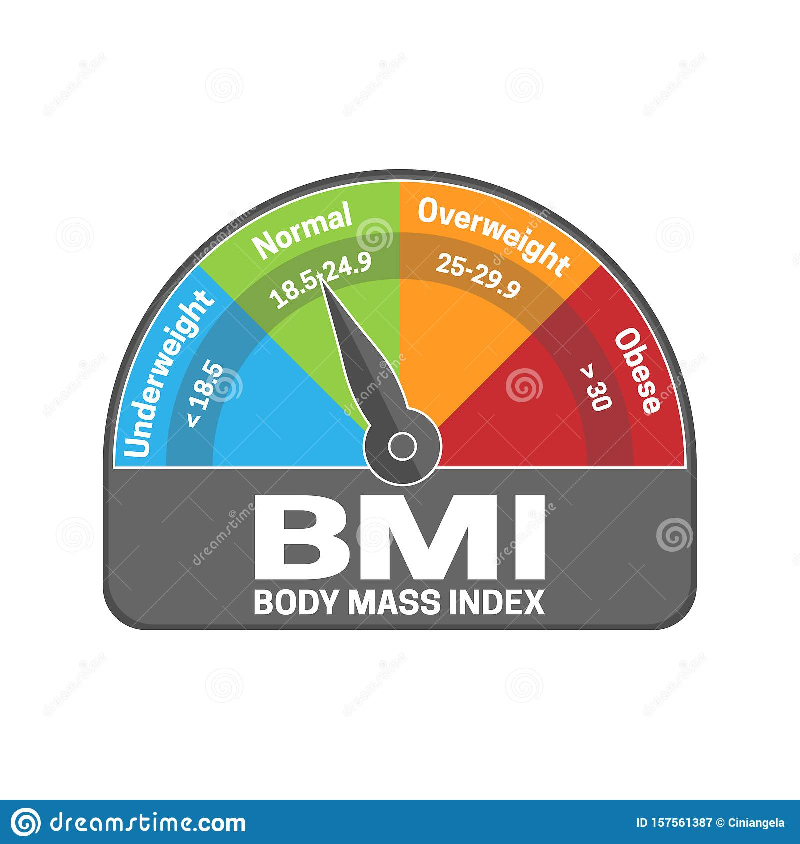 BMI Body Mass Index Calculate Illustration or Infographic Chart ...